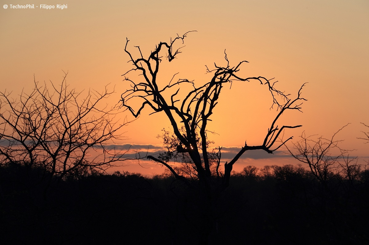 Tipical sunrise!...