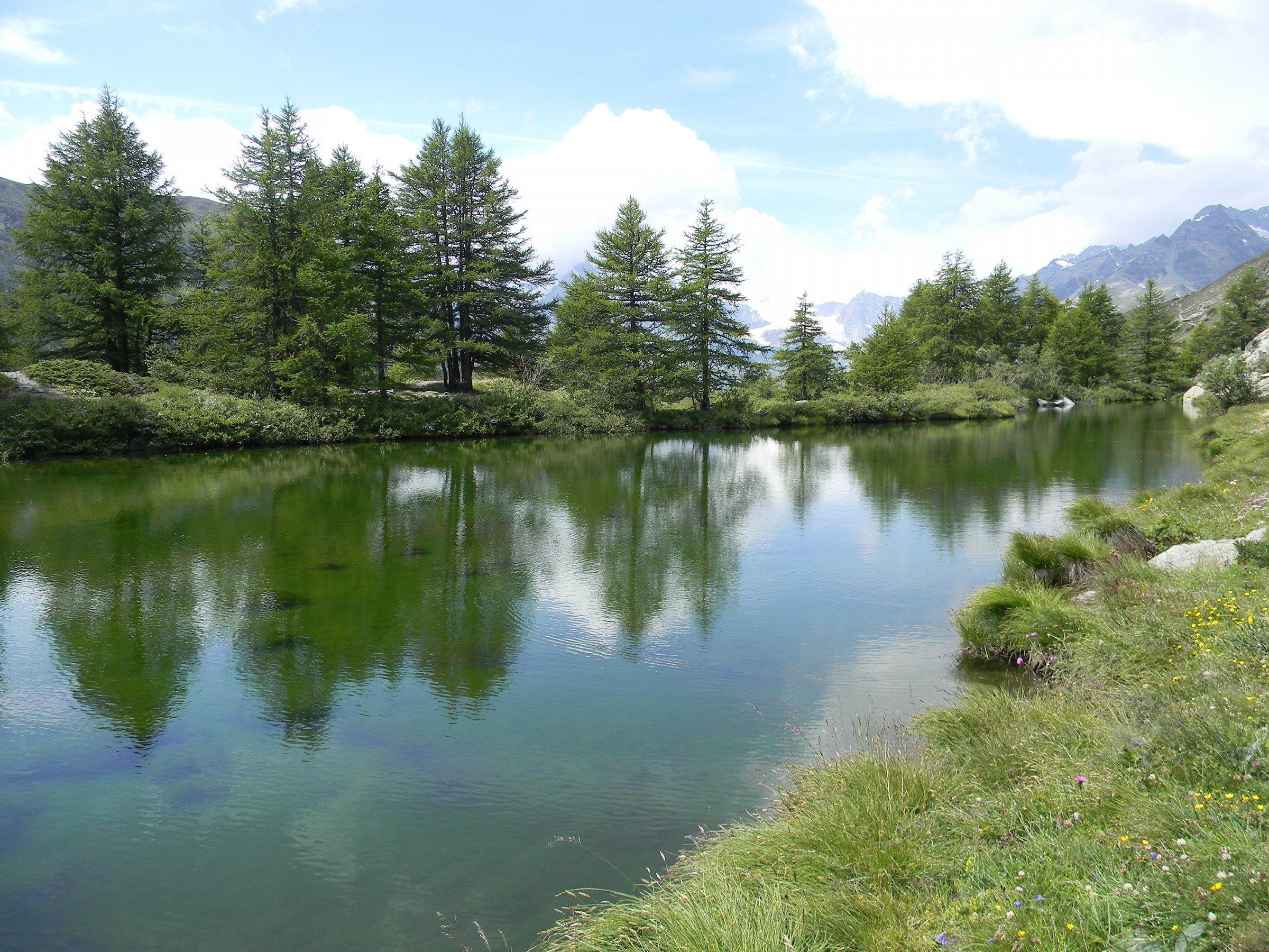 Alpine lake (Grindjisee)...