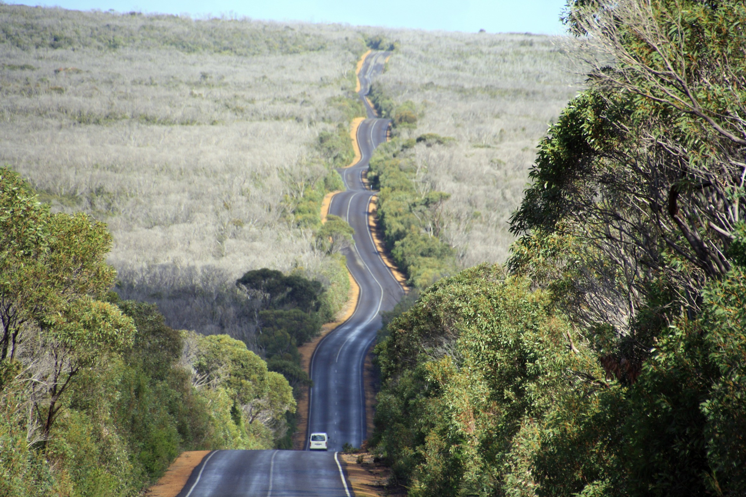 Kangaroo Isalnd - on the road...