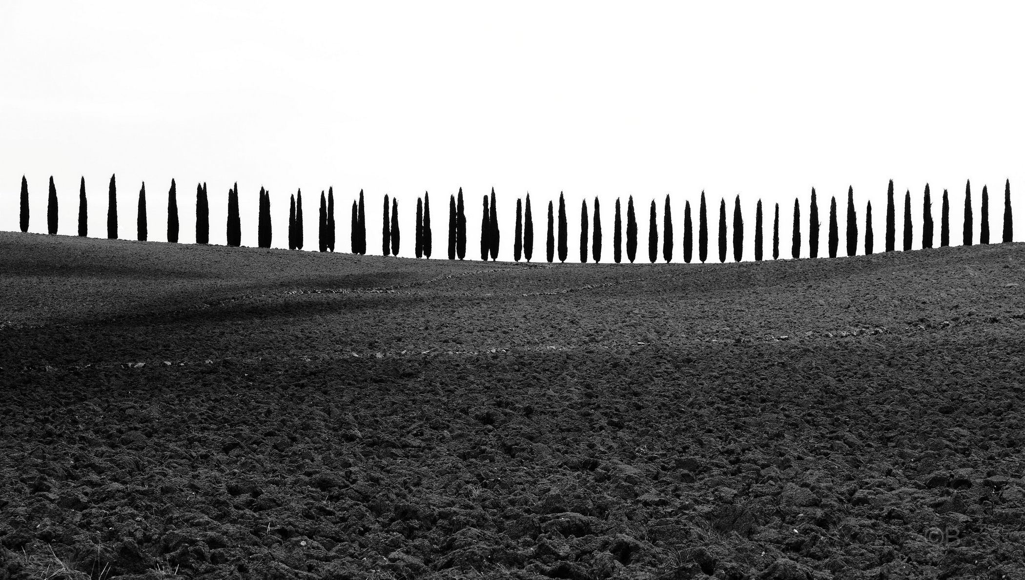 The Val d'Orcia in B & W...