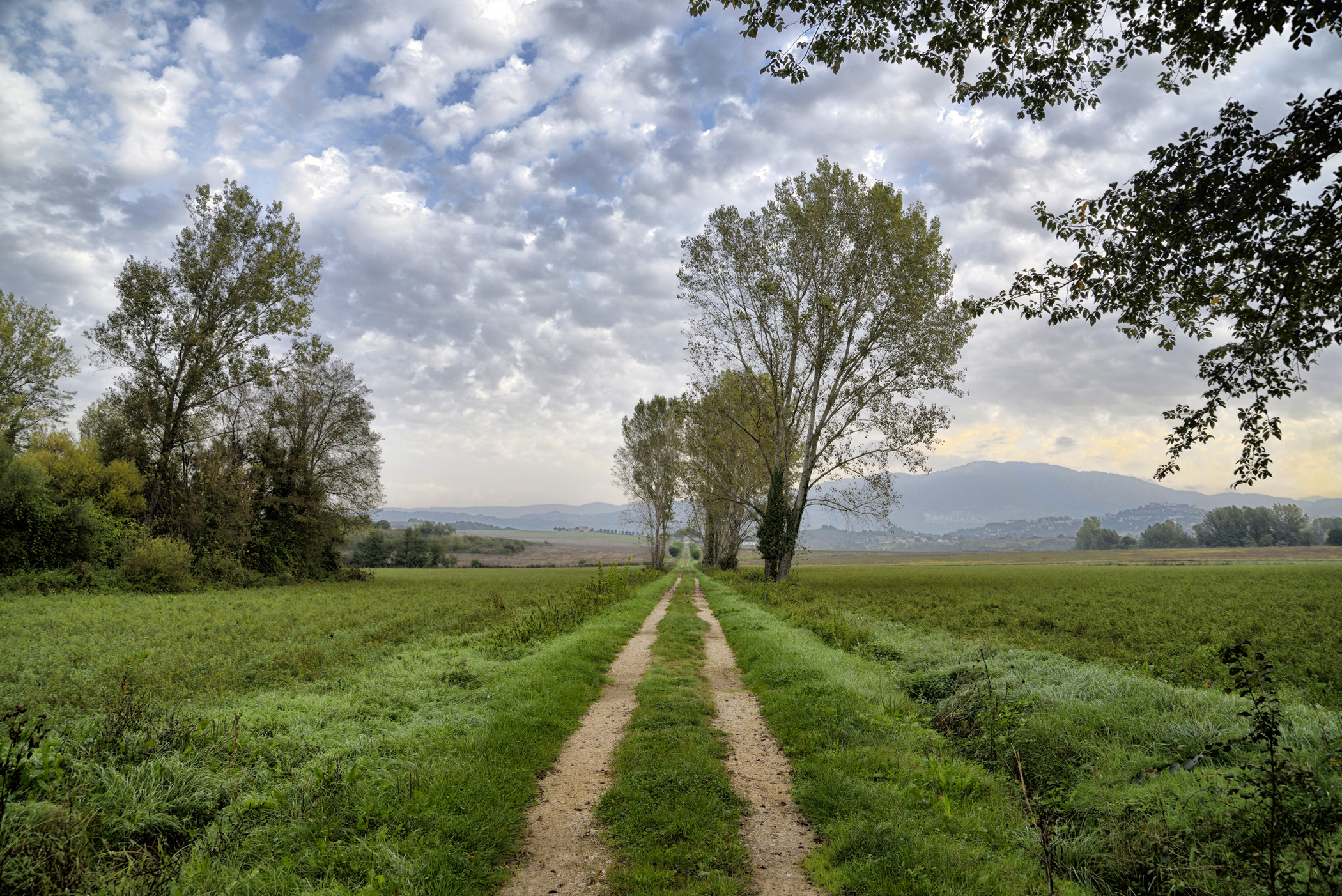 Country lanes...