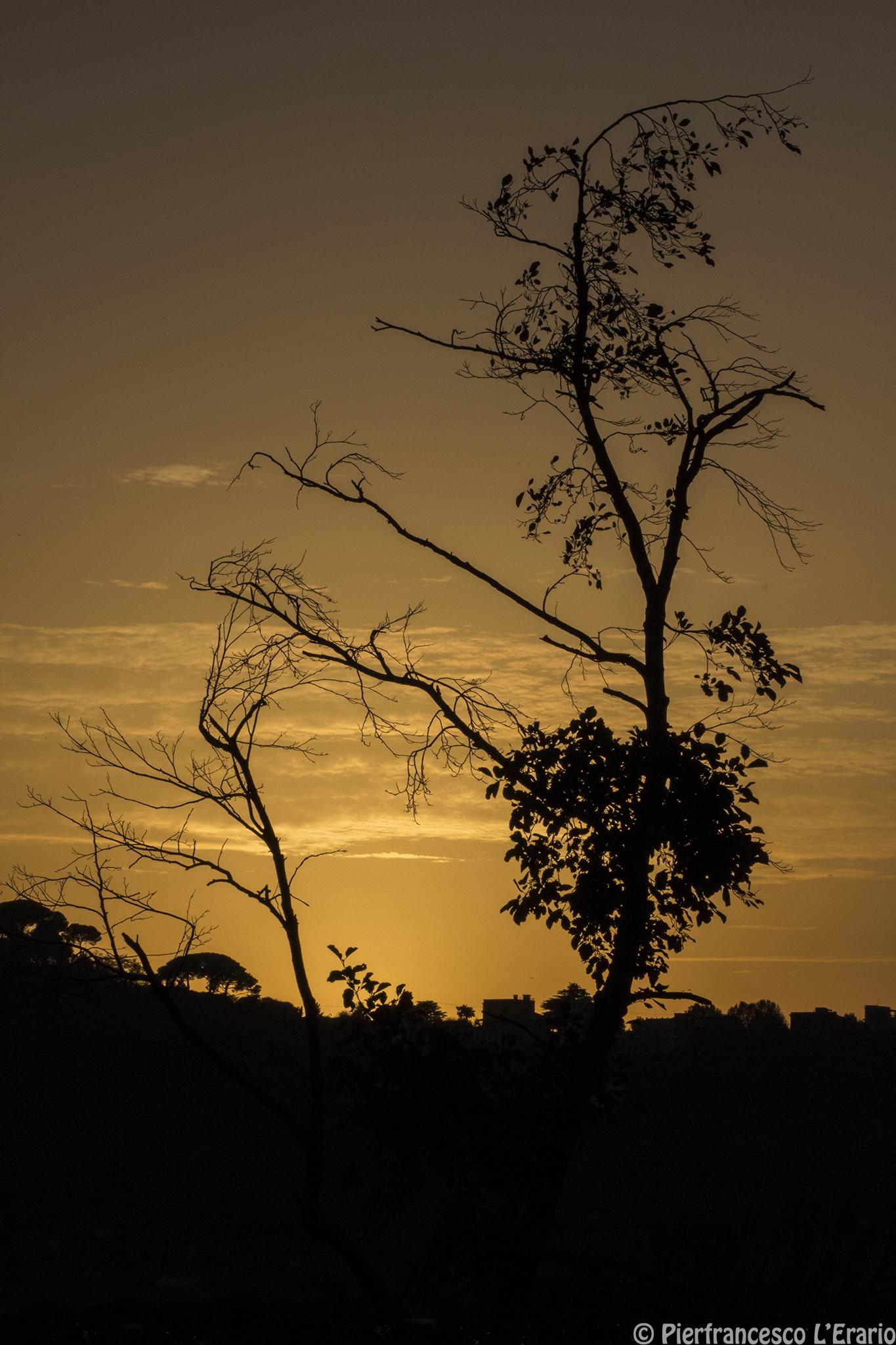 Mi spoglio in eleganza al tramonto...