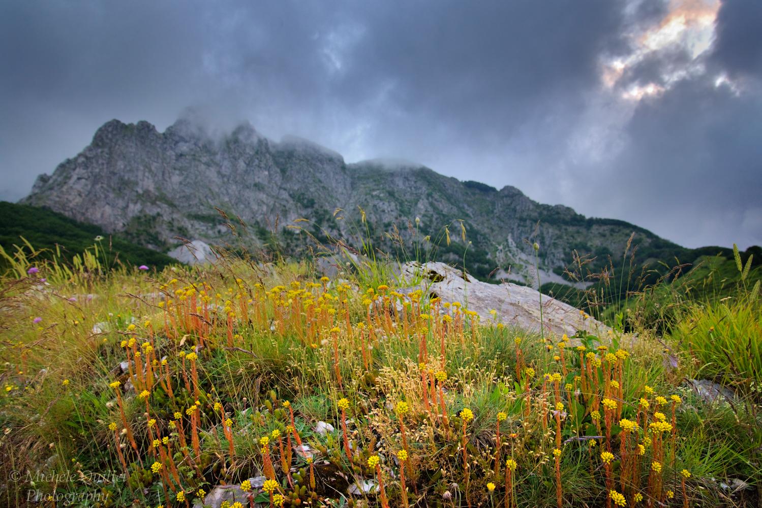 Alpi Apuane, Campocatino...