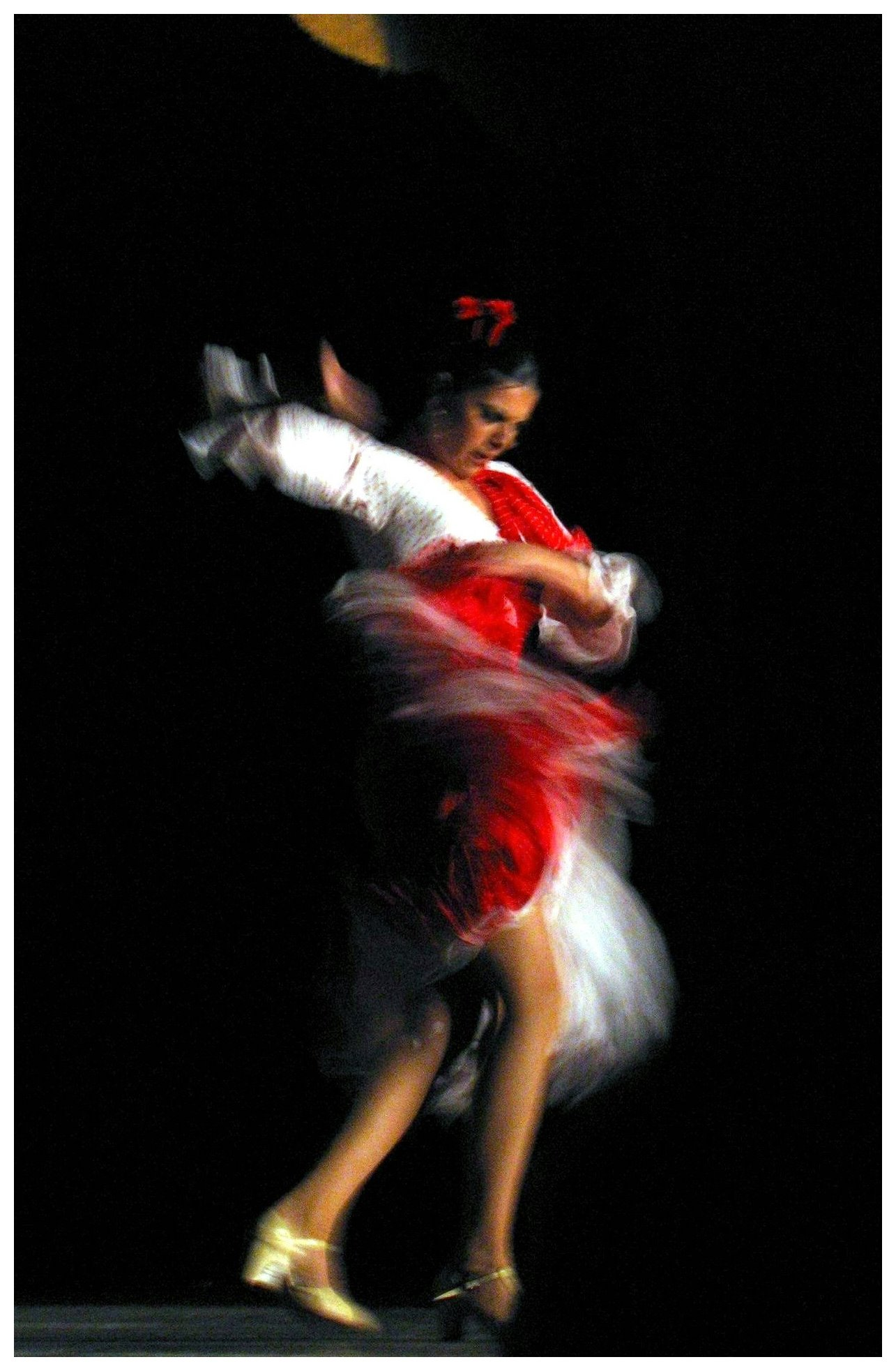 "Flamenco-pace, strength, expressiveness ""poetry in motion""..."