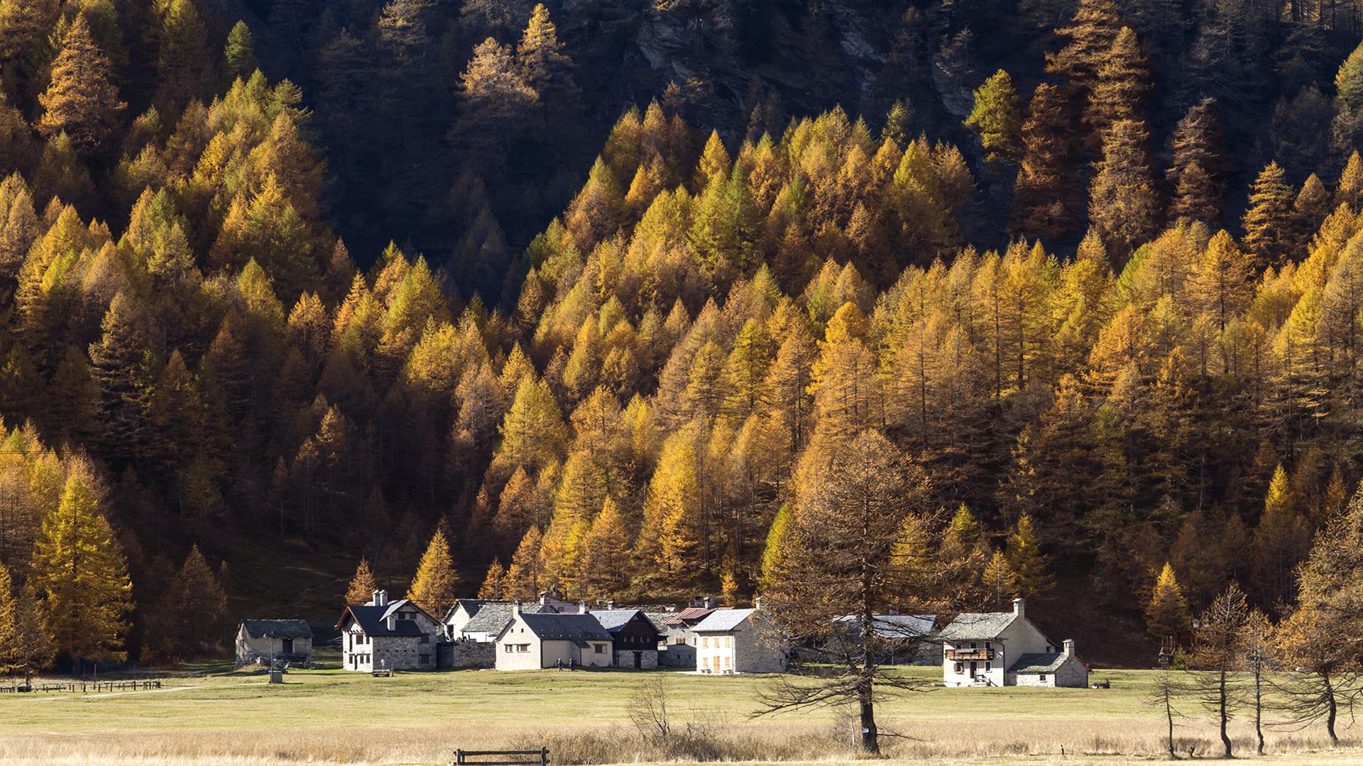 Autumn at devero...