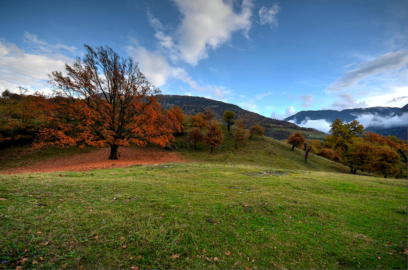 Autumn and its colors...
