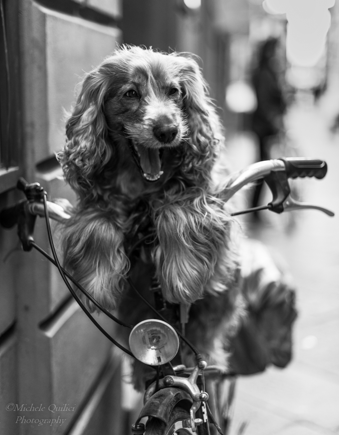 Guai a chi tocca la mia bicicletta!...