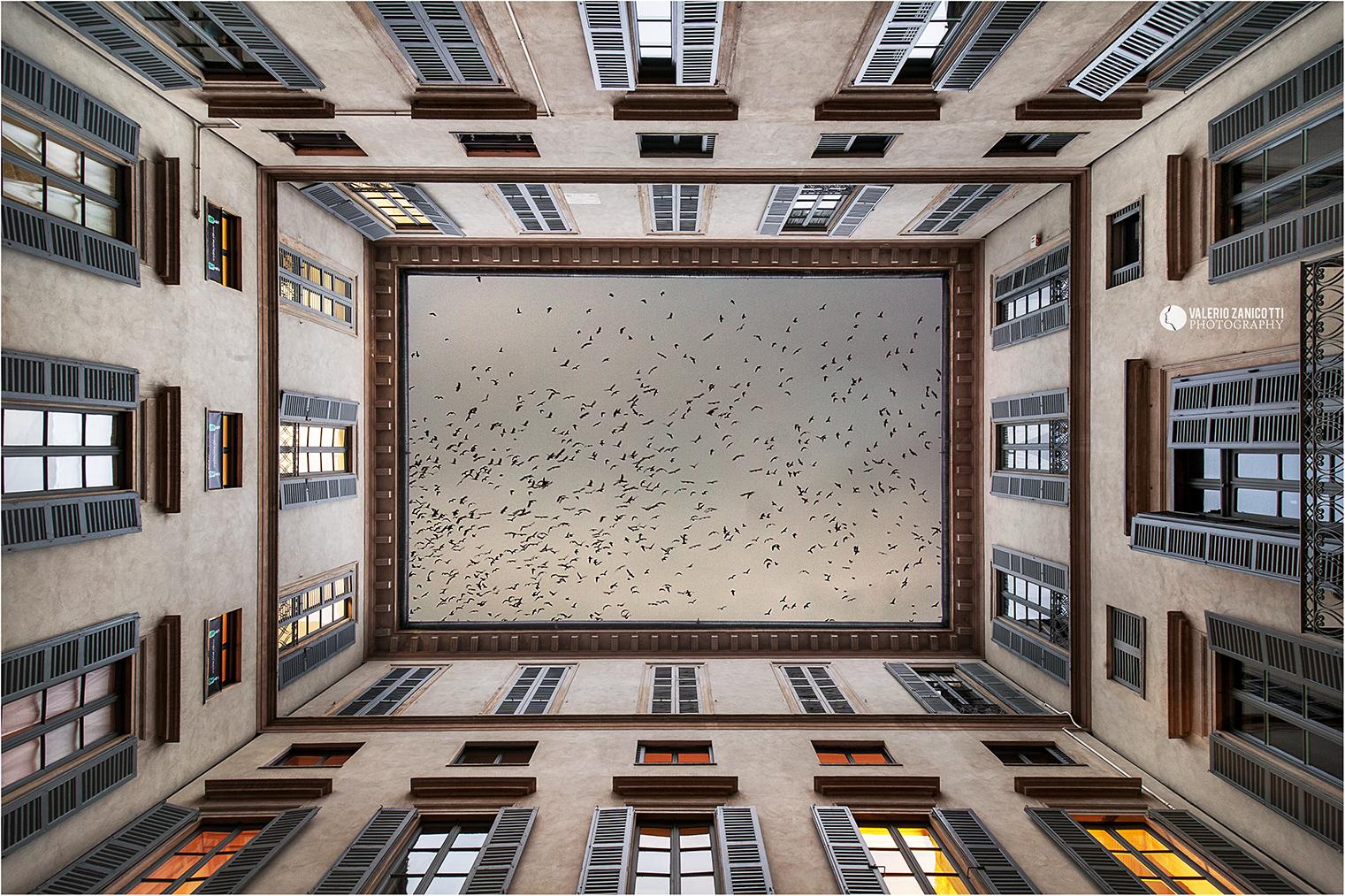 Architecture Milanese...