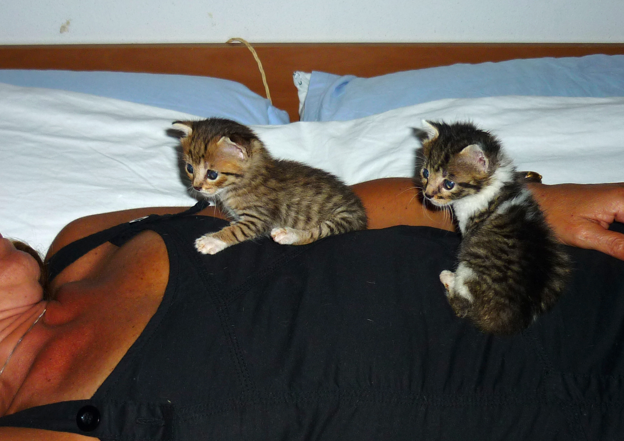 Bibo and Greta...