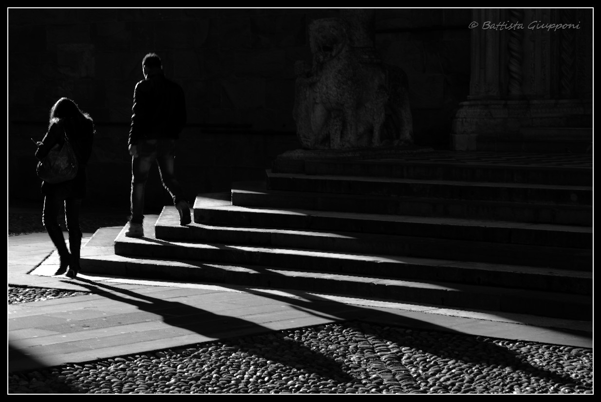 Lights and shadows on the pair...