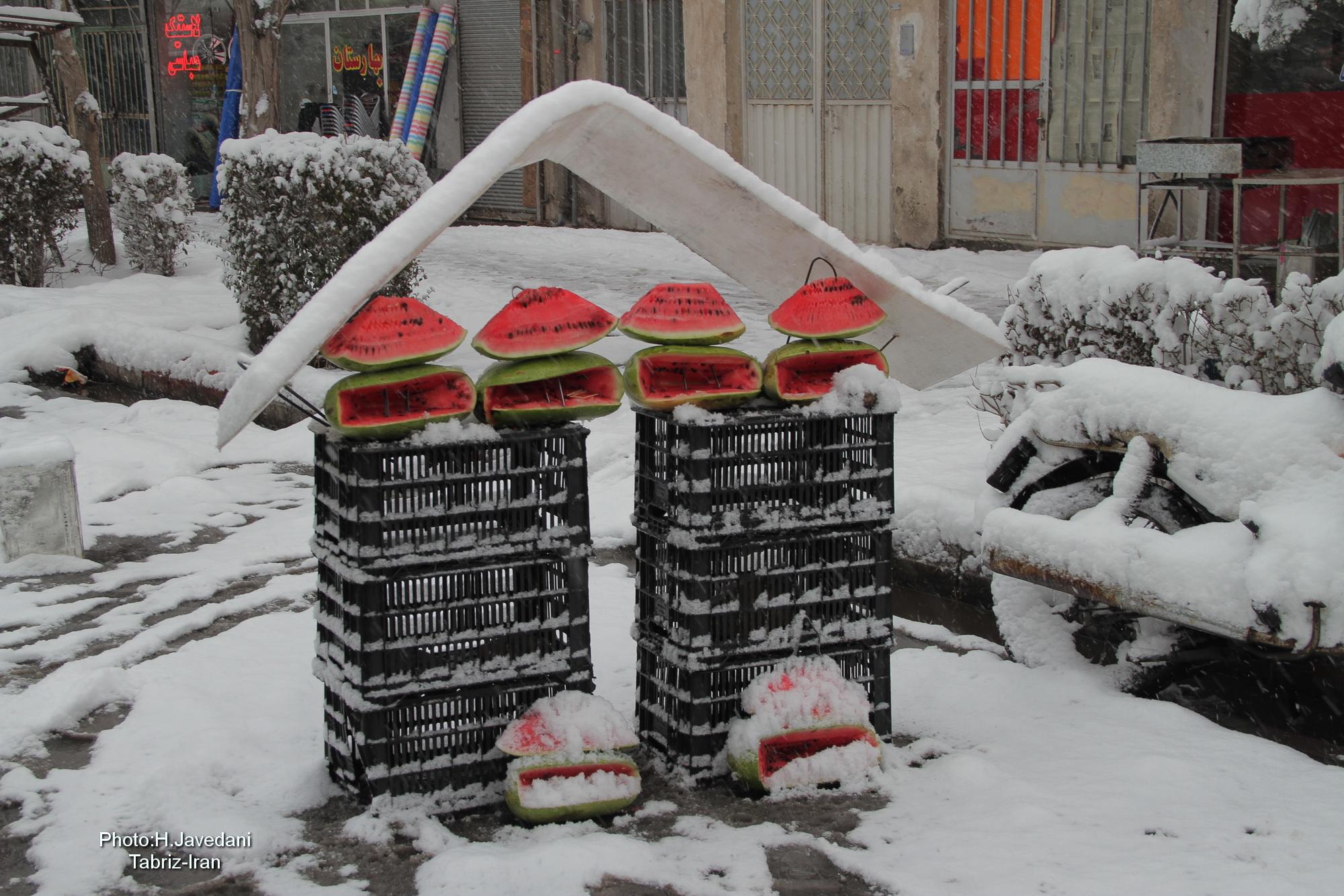 Watermelon & Winter !...