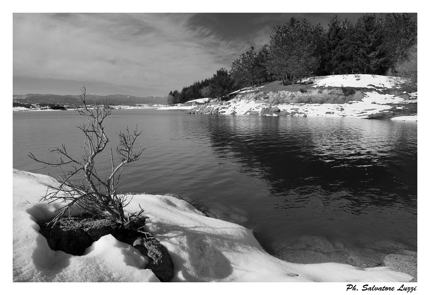 Lago Cecita (cs)...