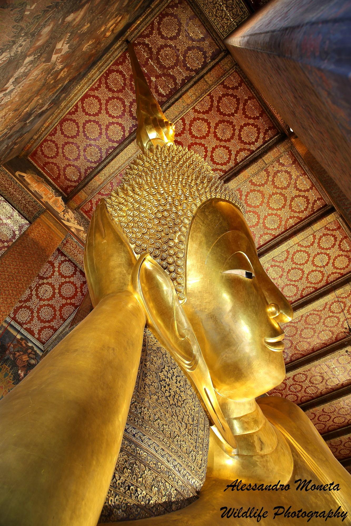 Buddha Sdraiato...