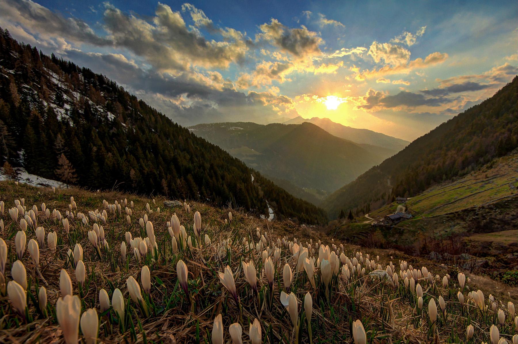 Alpe lake at sunset...