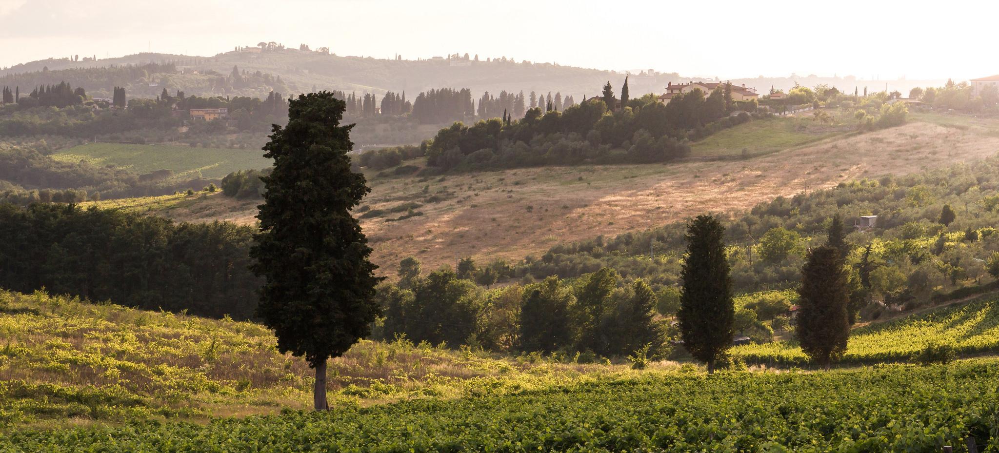 Tramonto Toscano...