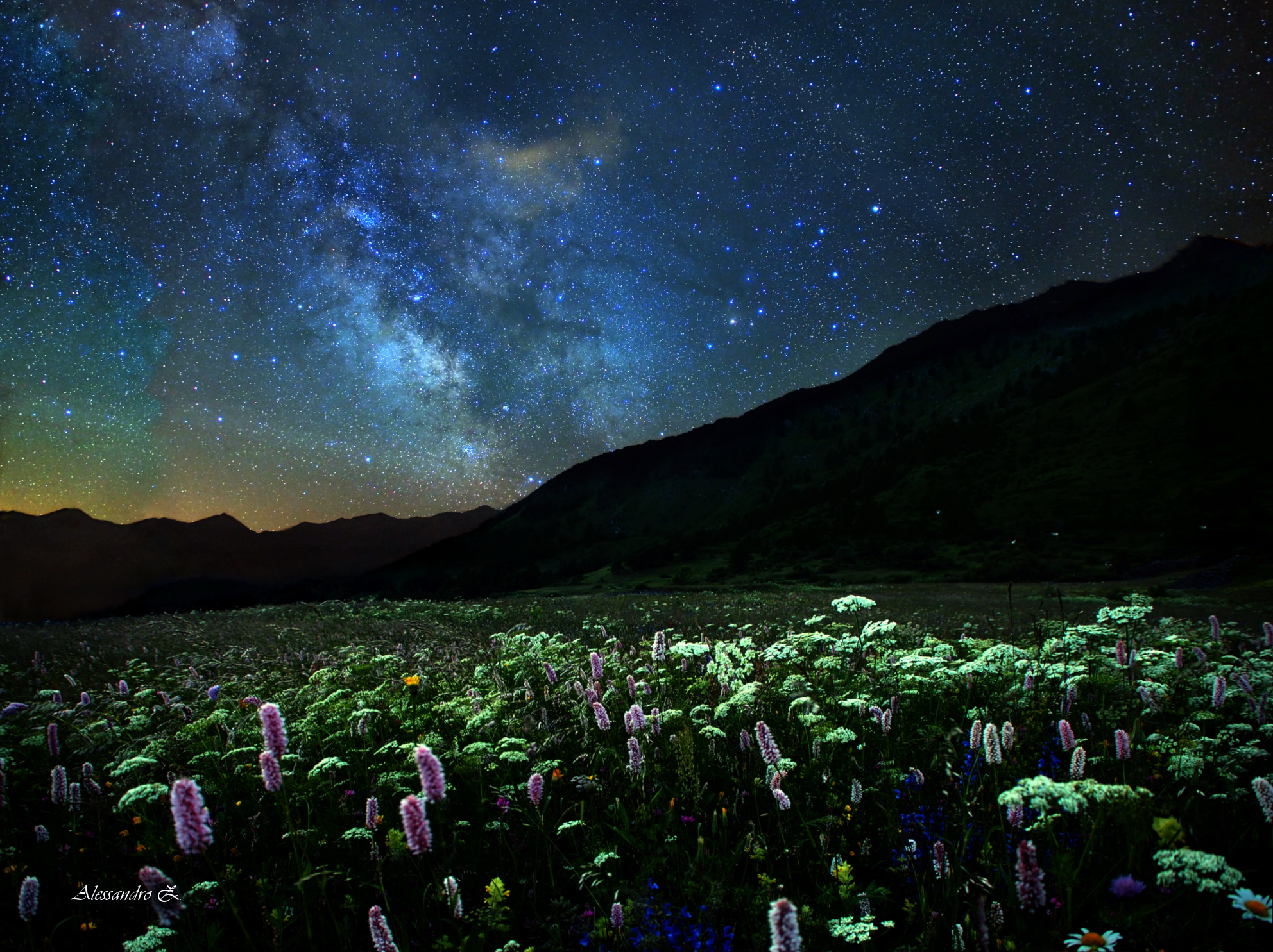 Flowery terrace overlooking the center of the galaxy ......
