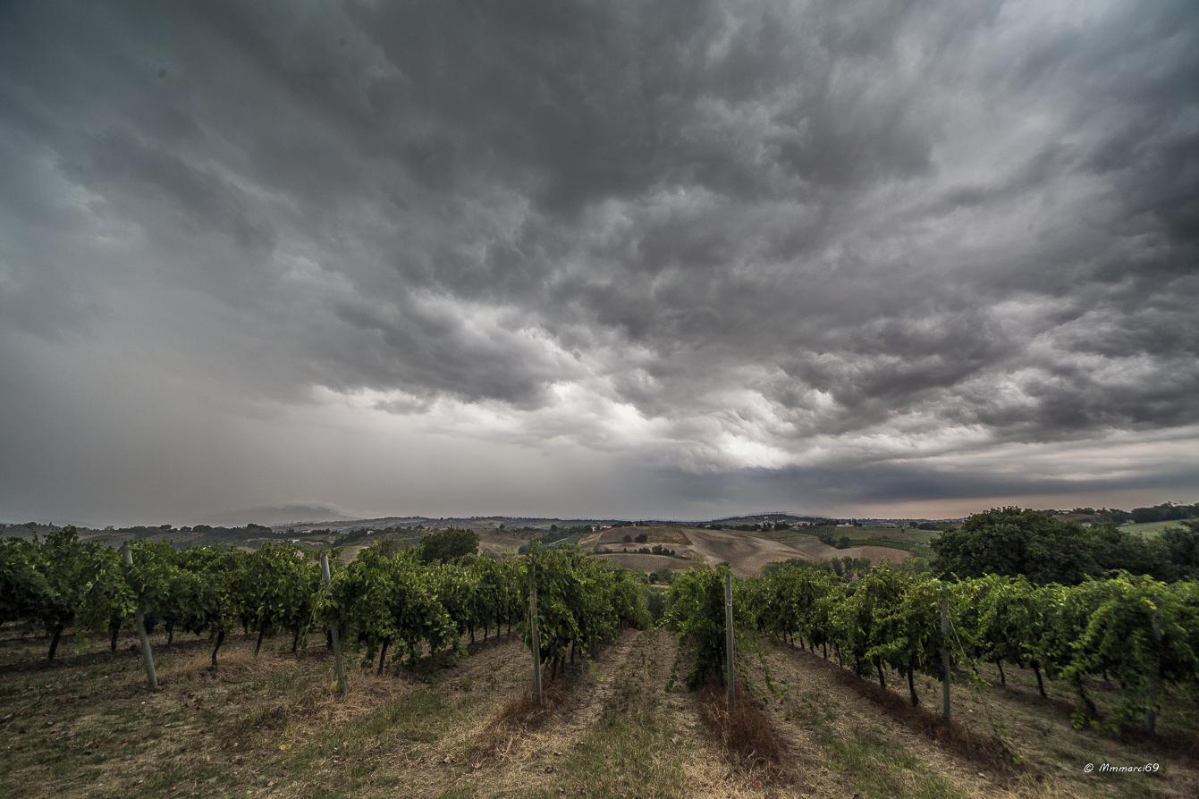 storm .........