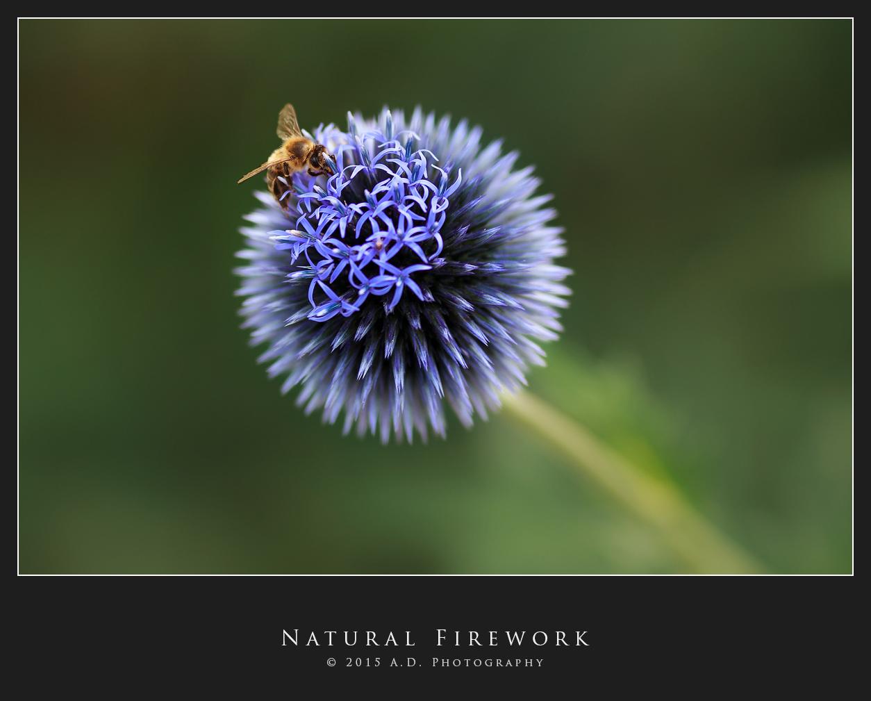 Natural Firework...