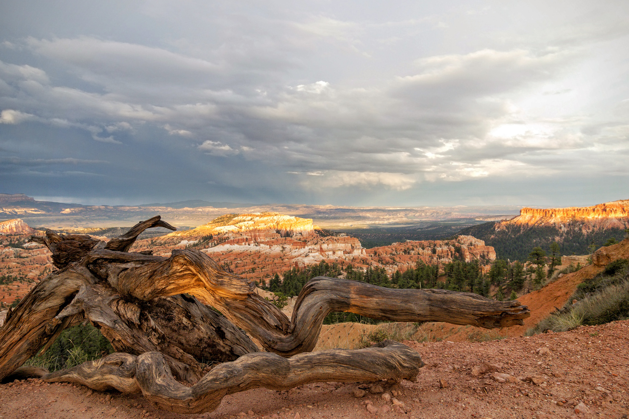 Bryce Canyon...
