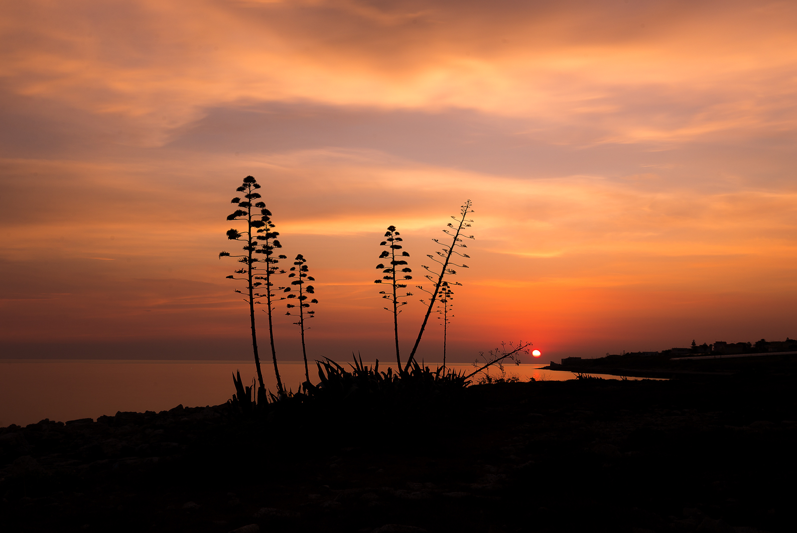 Un caldo tramonto di fine estate...