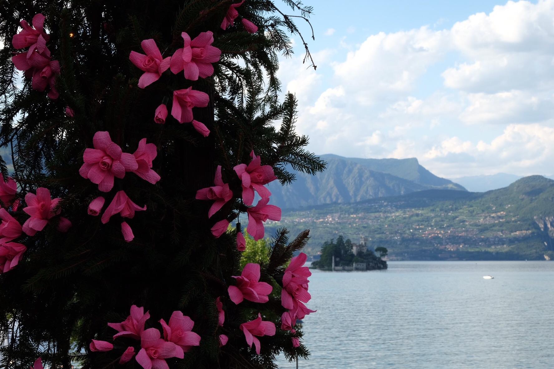 Festa dei fiori Montisola...