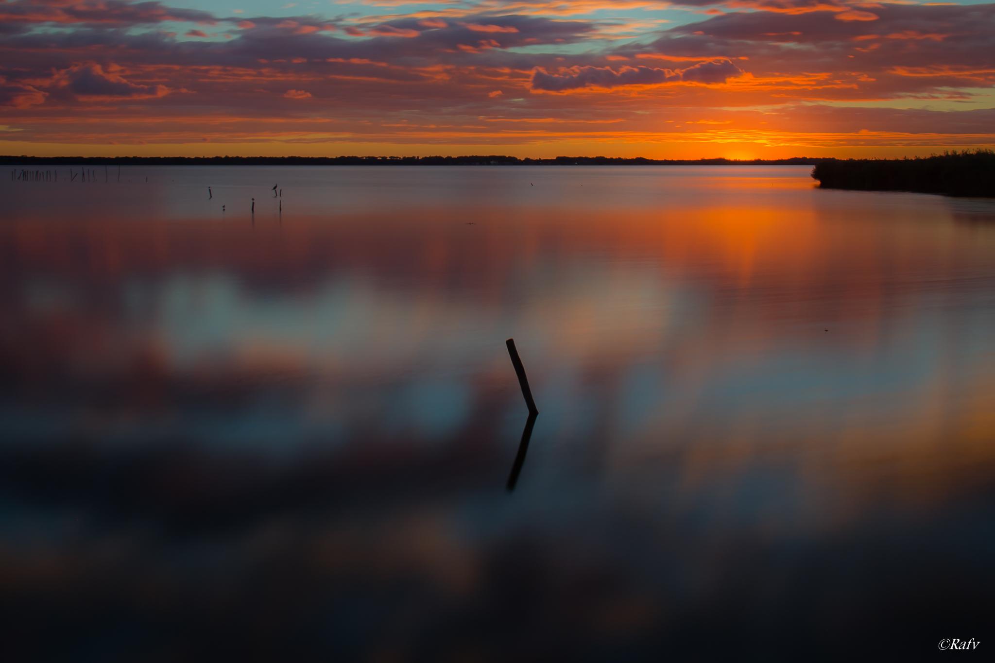 Sunset Massaciuccoli Lake...