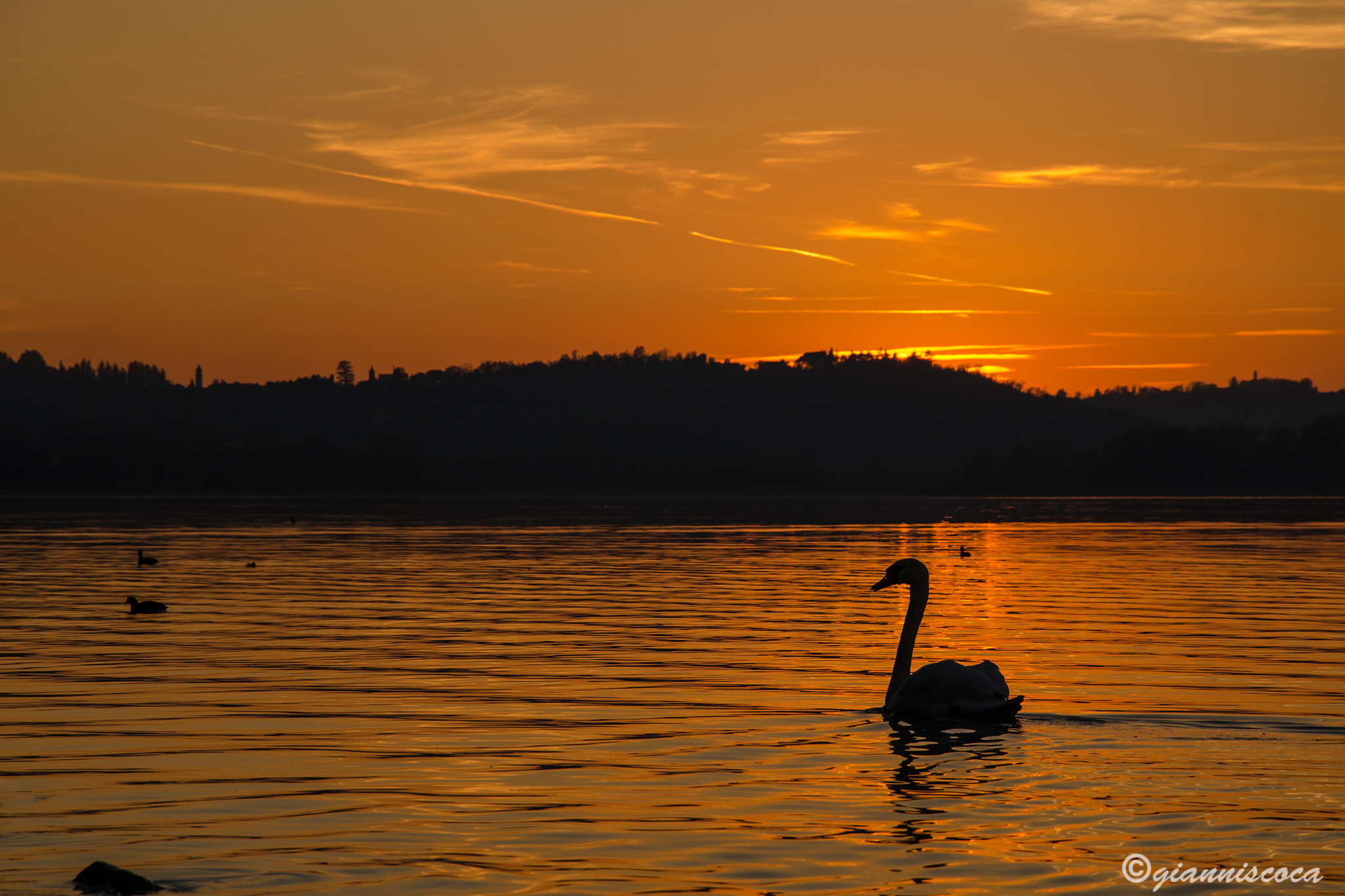 Sunset Lake Pusiano...