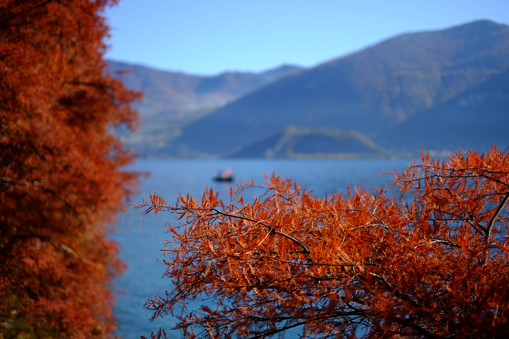 Colori d'autunno d'autunno sul lago...
