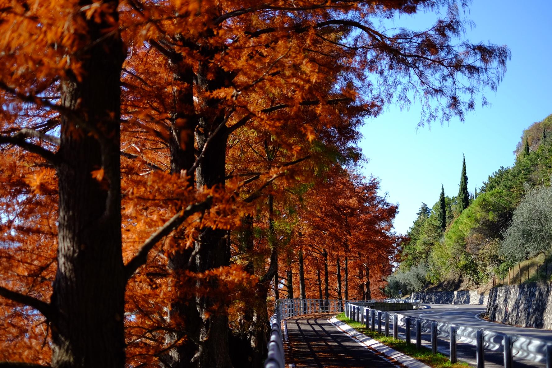 L'autunno prende il sopravvento.......
