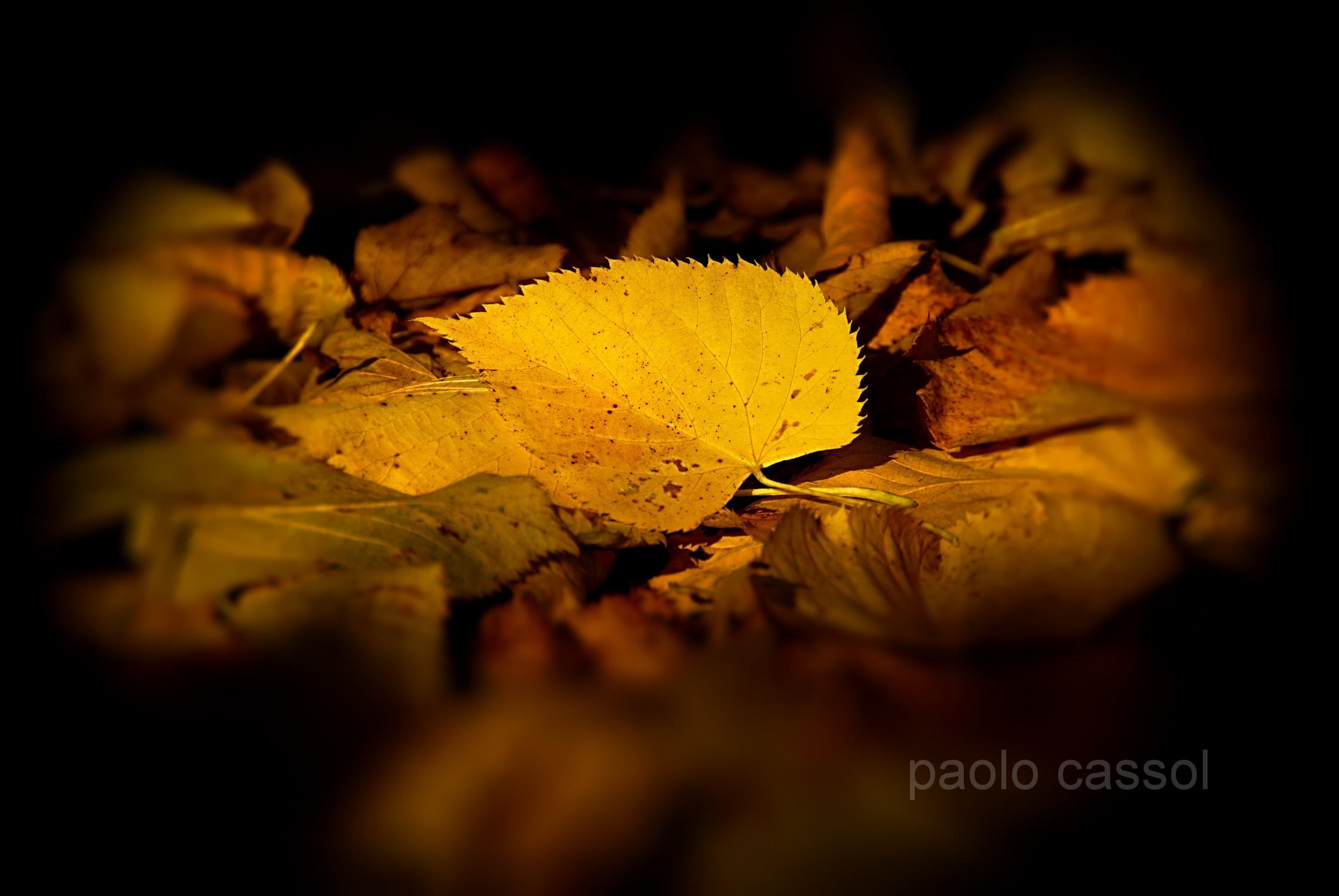 autunno...