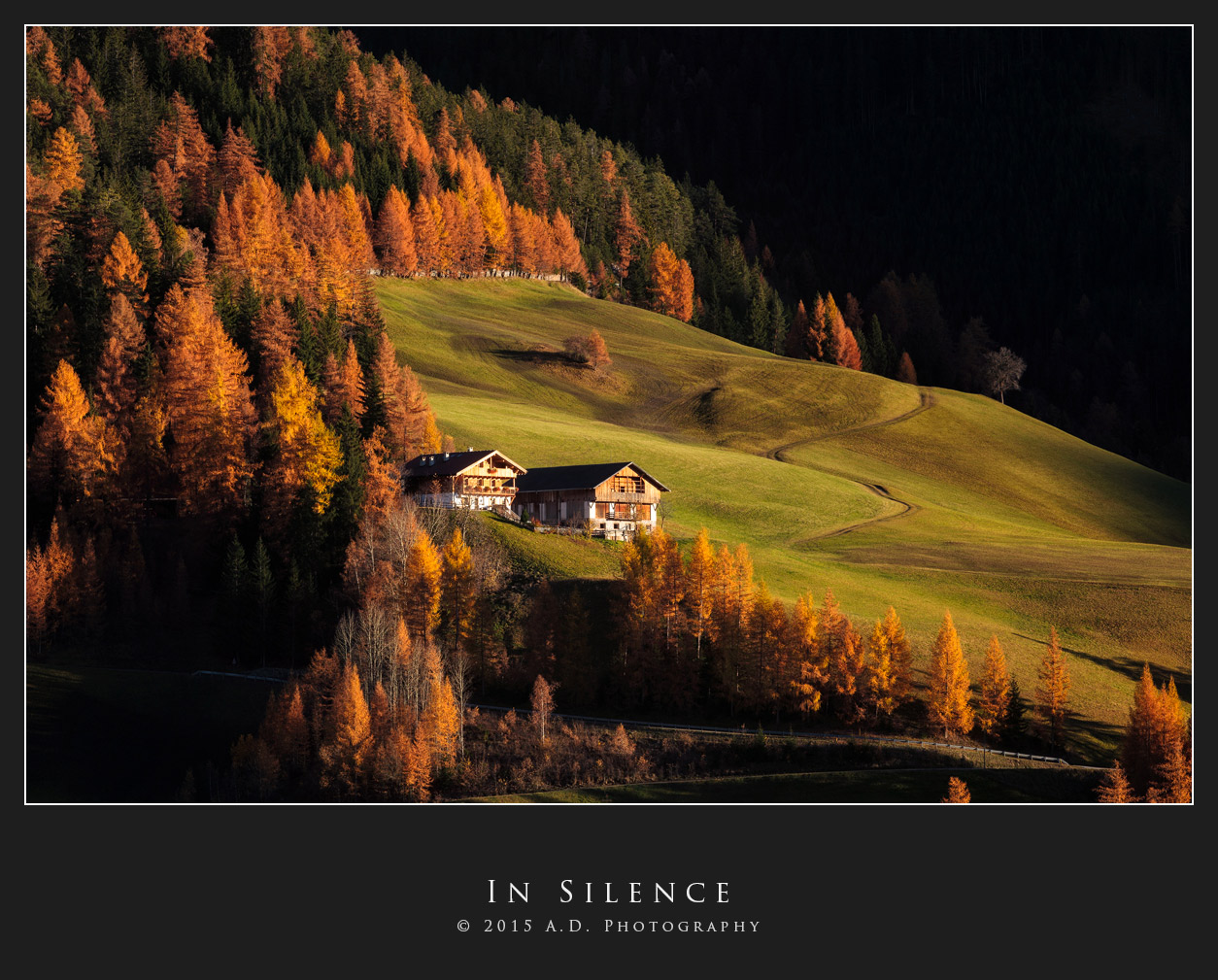 In Silence...