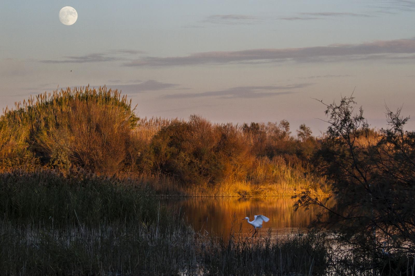 Last light of the day to the Mediterranean Habitat Centre...