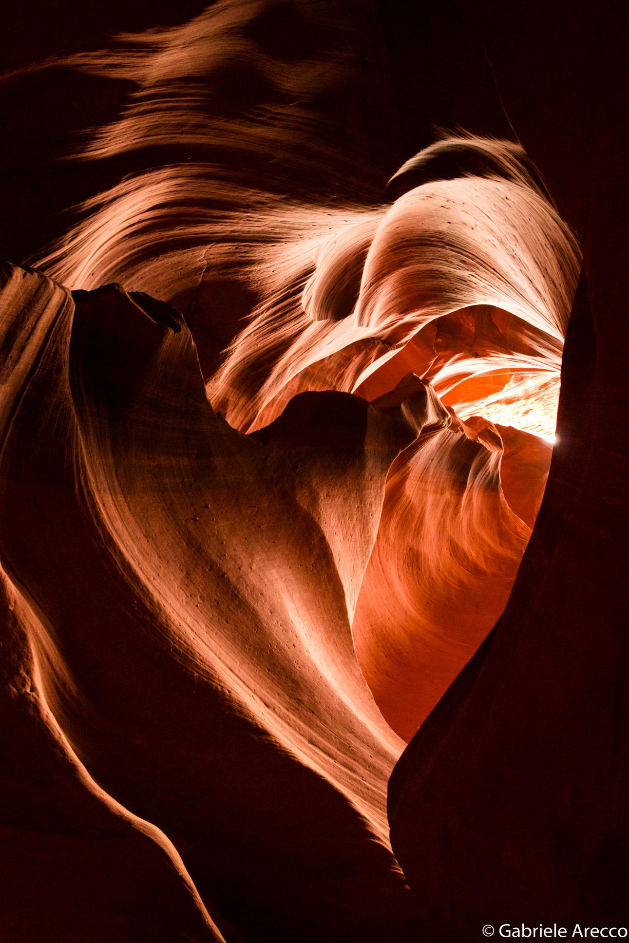 Antelope's heart...