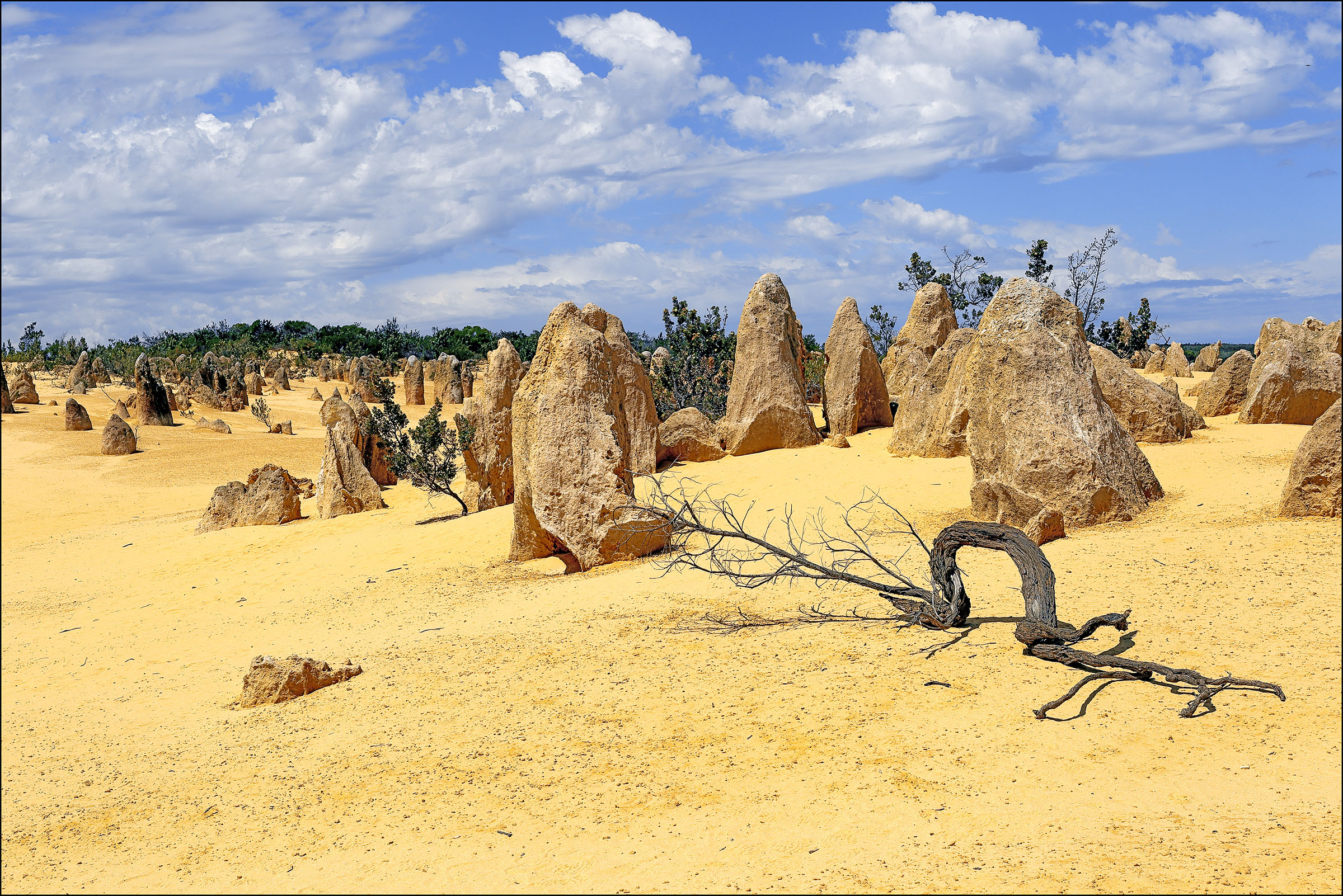 Pinnacle Desert 1 w.a....