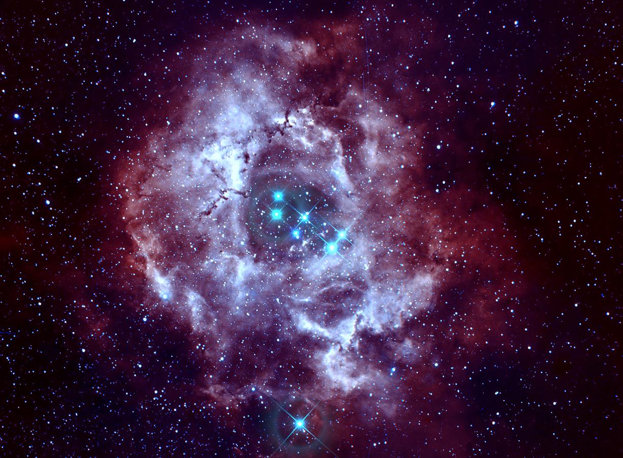 Experiment Rosette Nebula in Bicolor False...