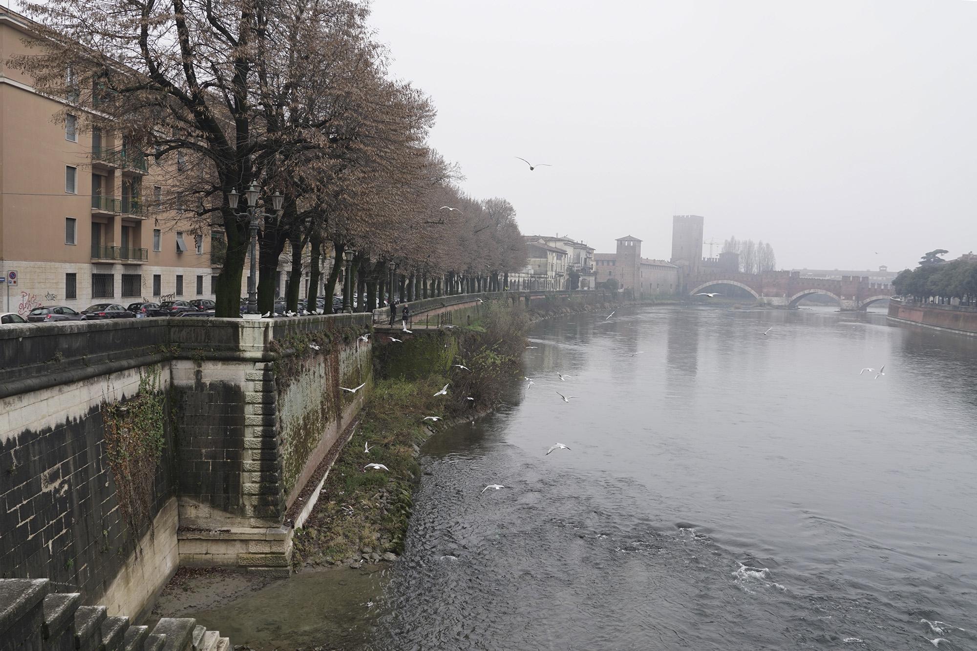 Un po' di Adige a Verona...