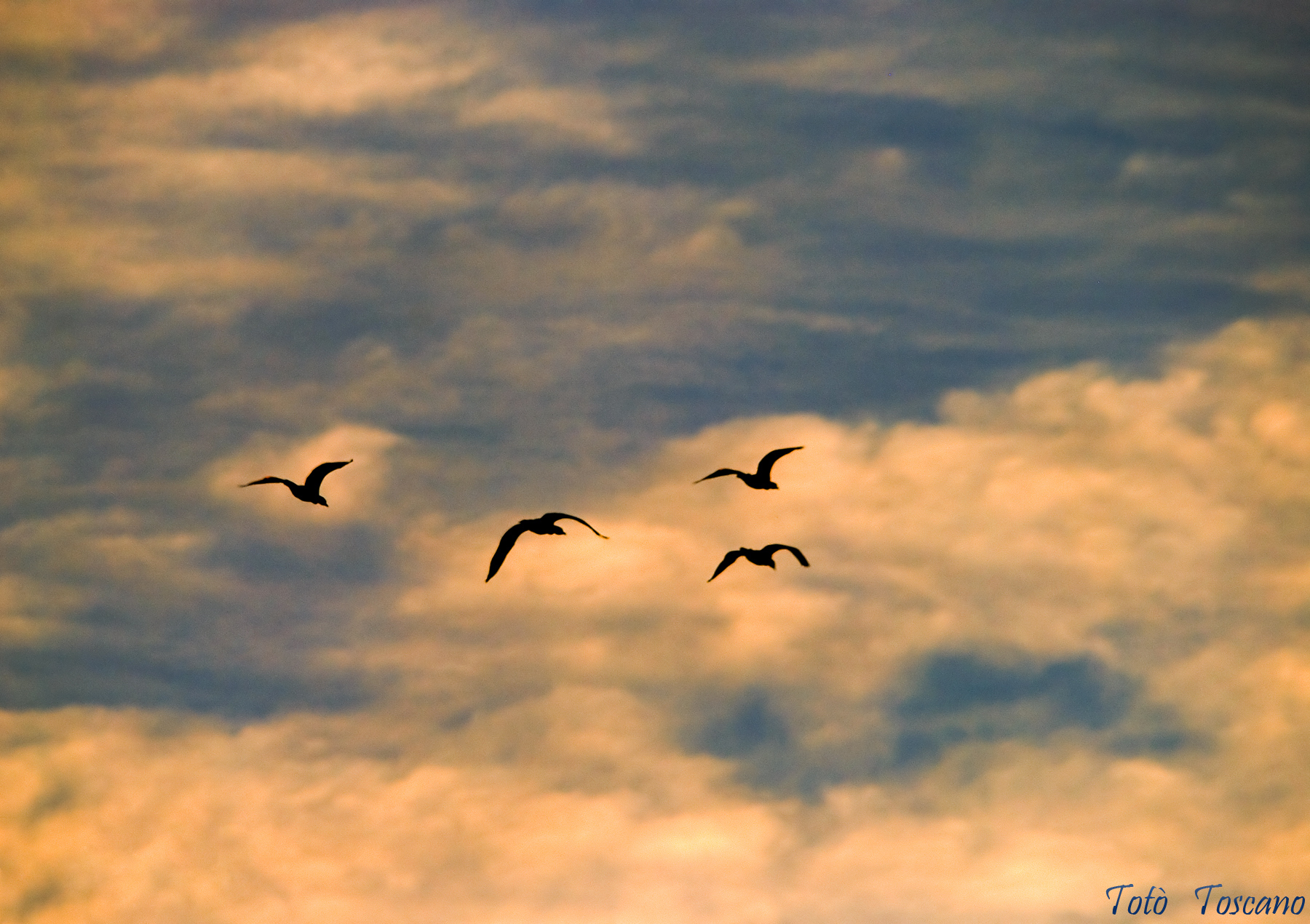 Verso cieli nuovi...