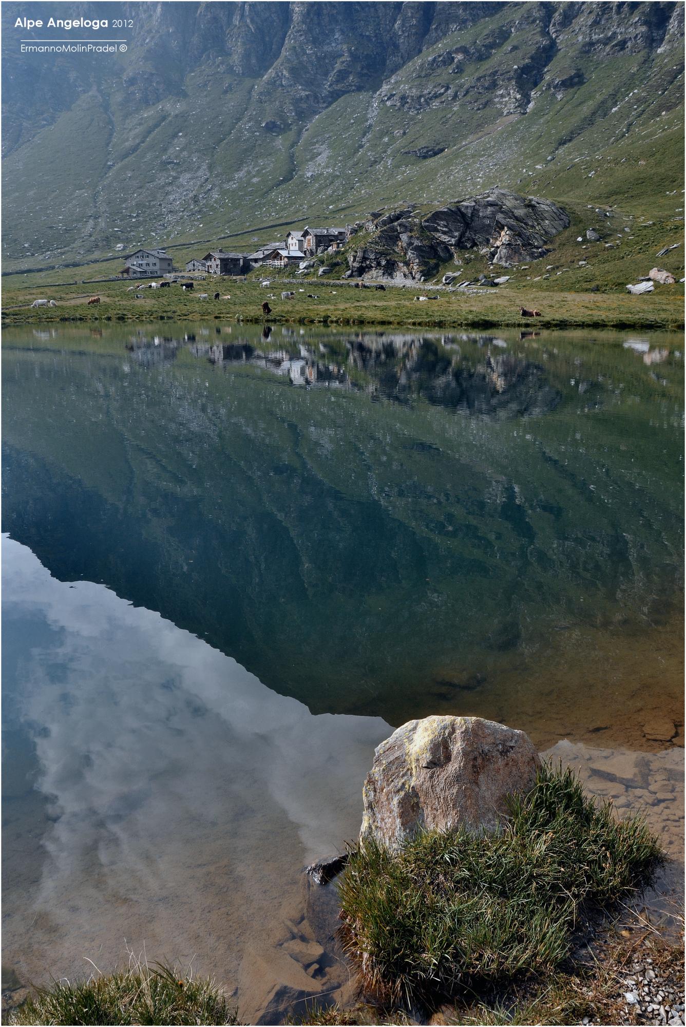 all'Alpe Angeloga...