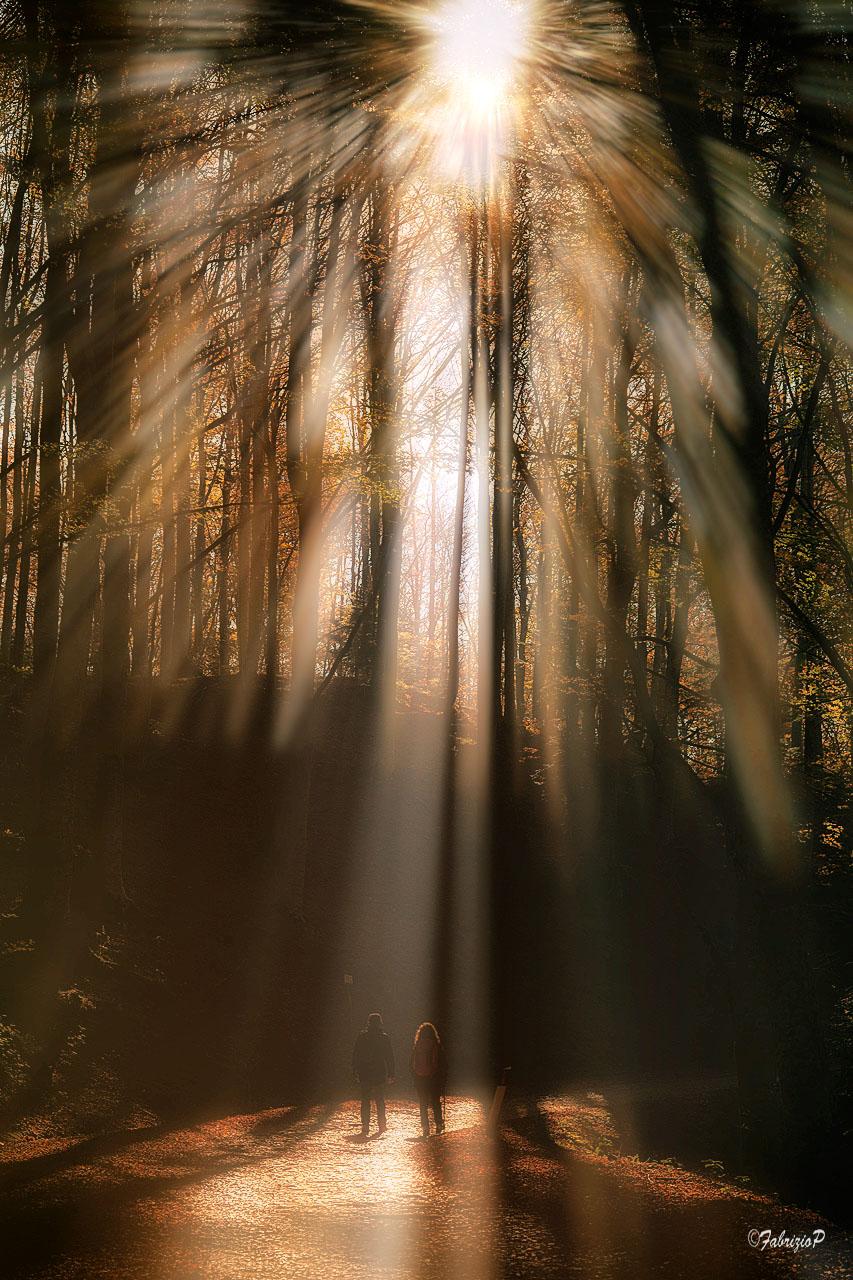 A light... sacral ...
