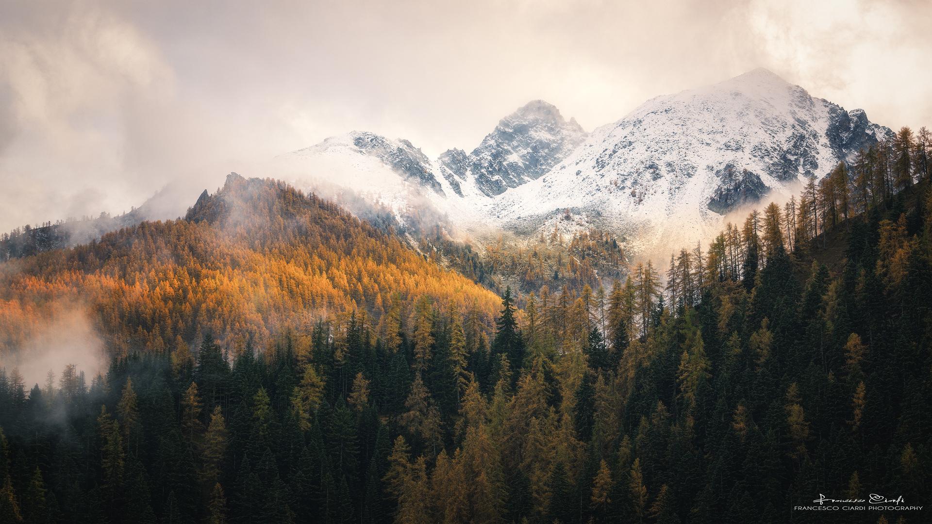 Winter knocks at the gates of autumn...