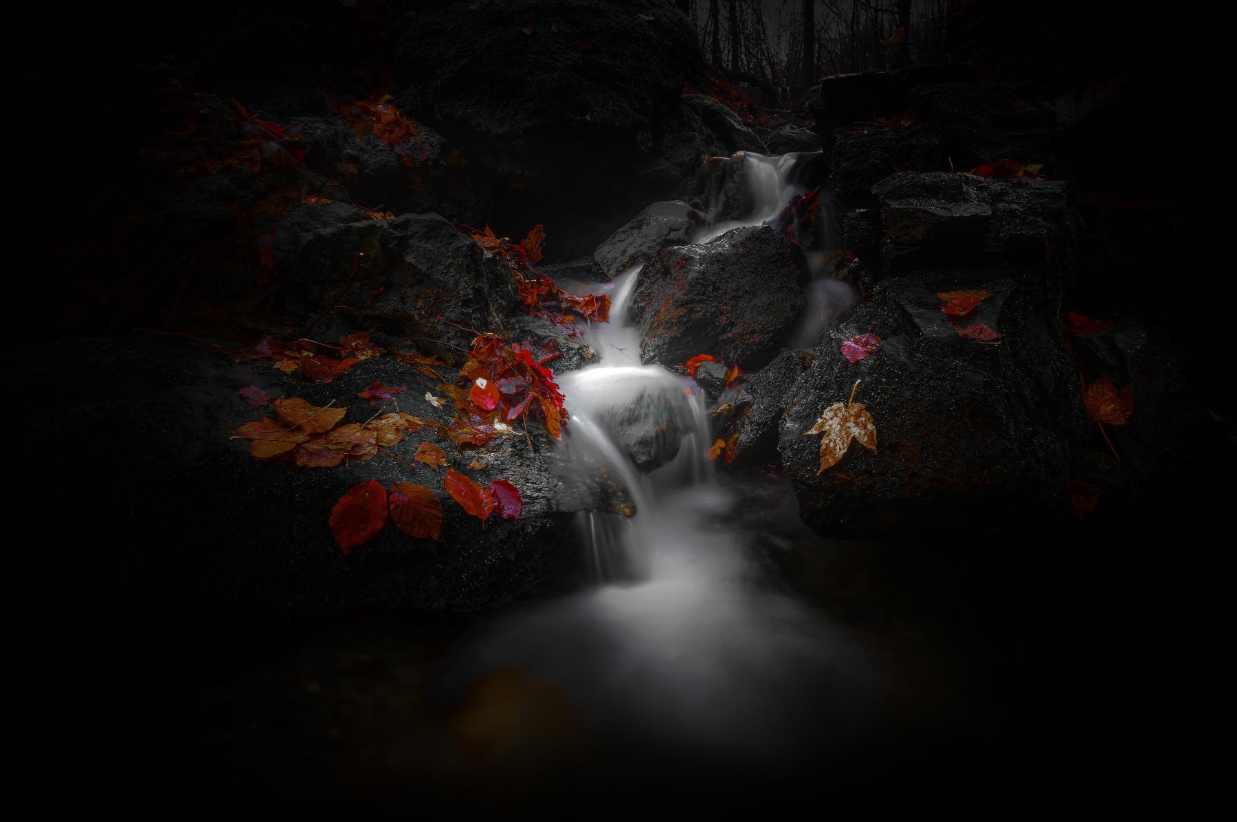 Life flows...