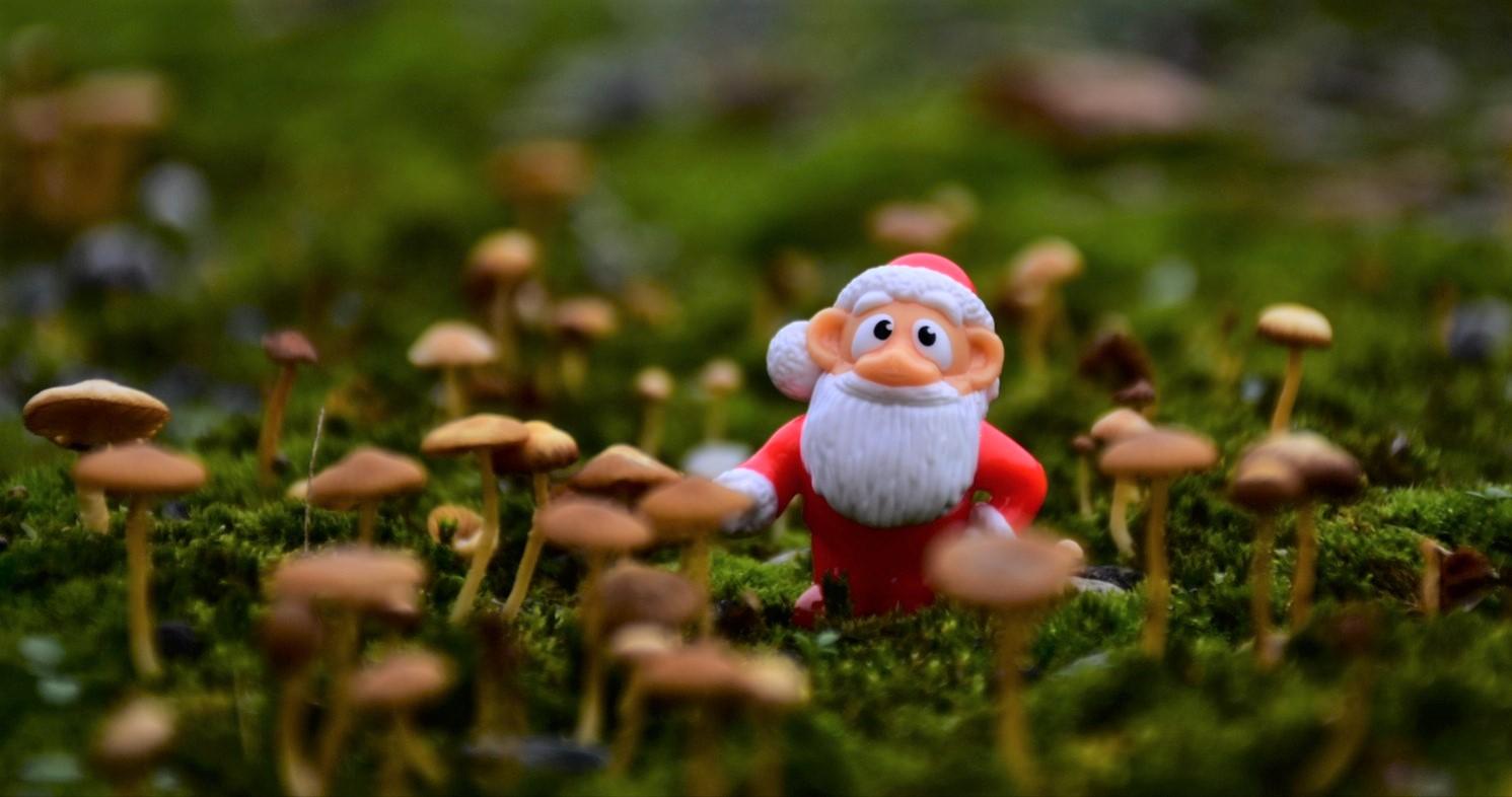 Christmas Fairy...