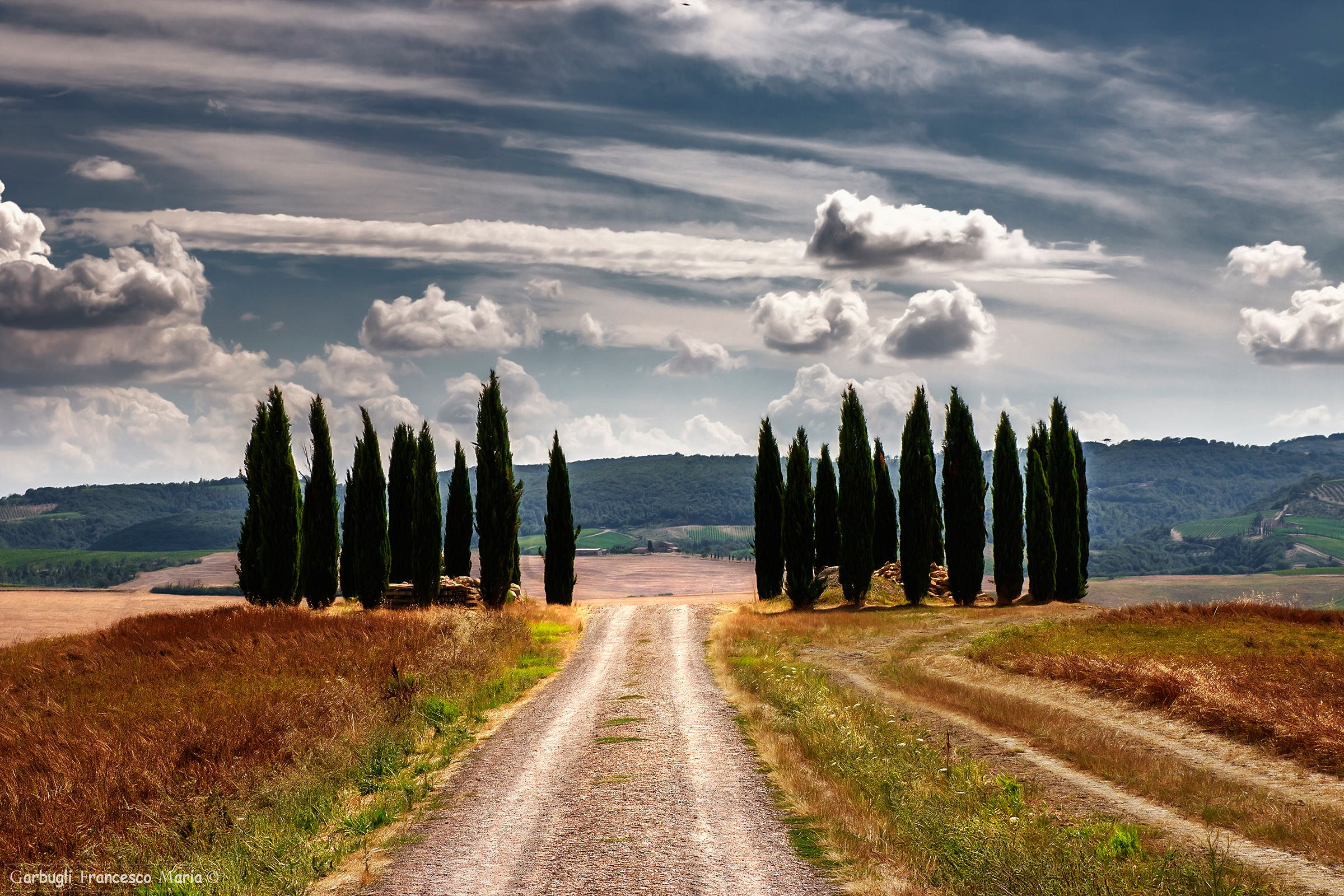 The road between the cypress trees..........