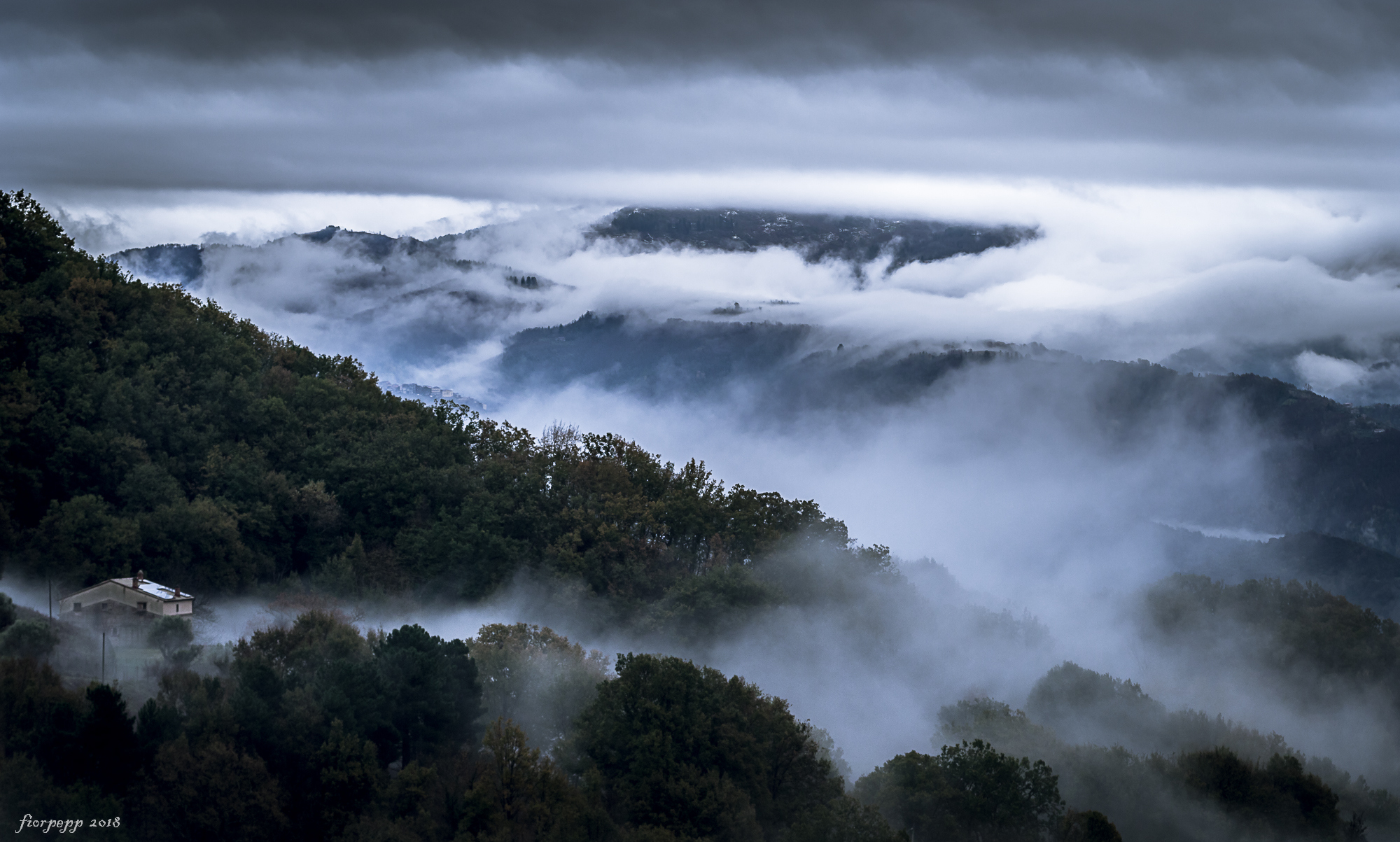 The fog to the bristling hills.......