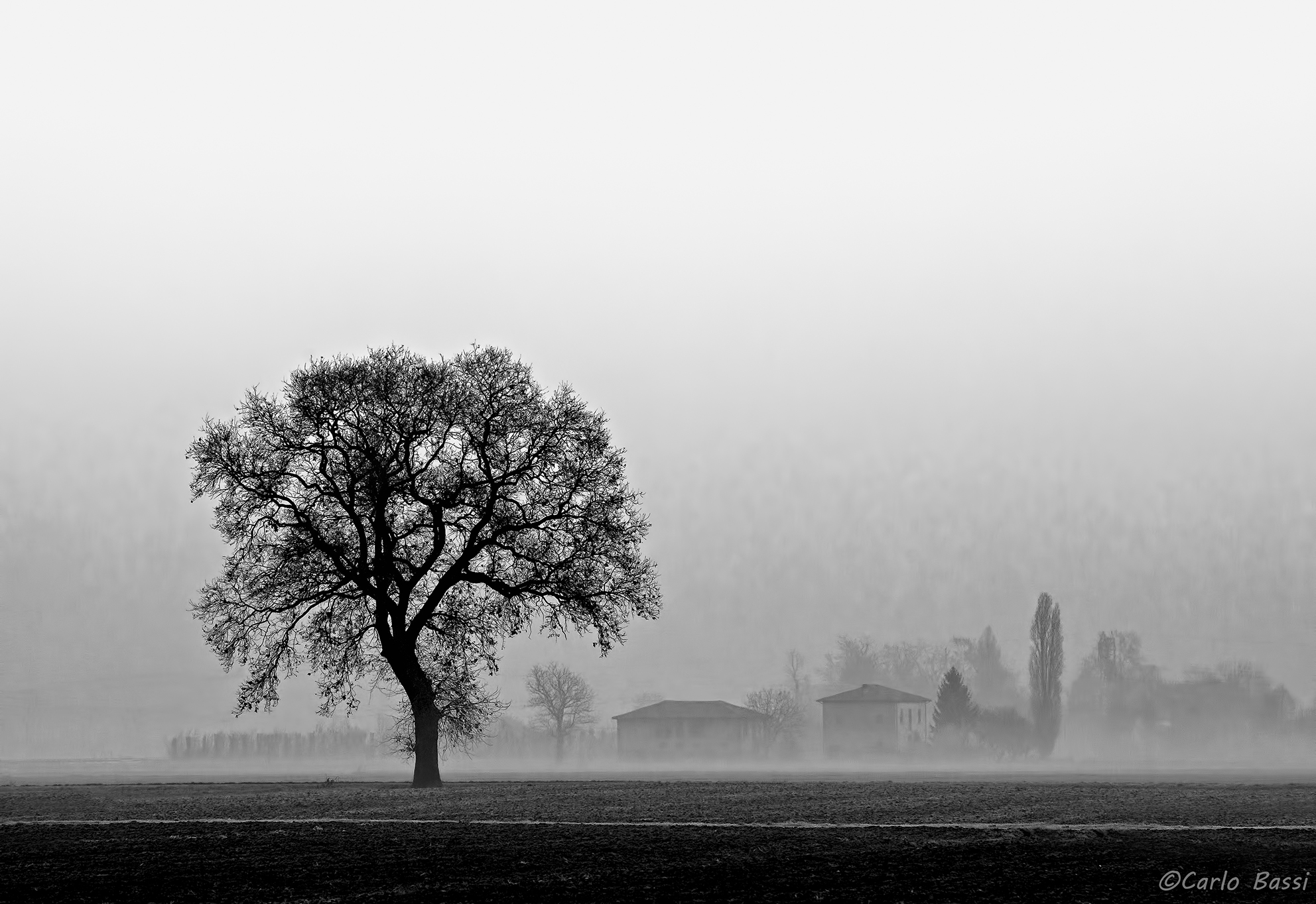 The fascination of fog...