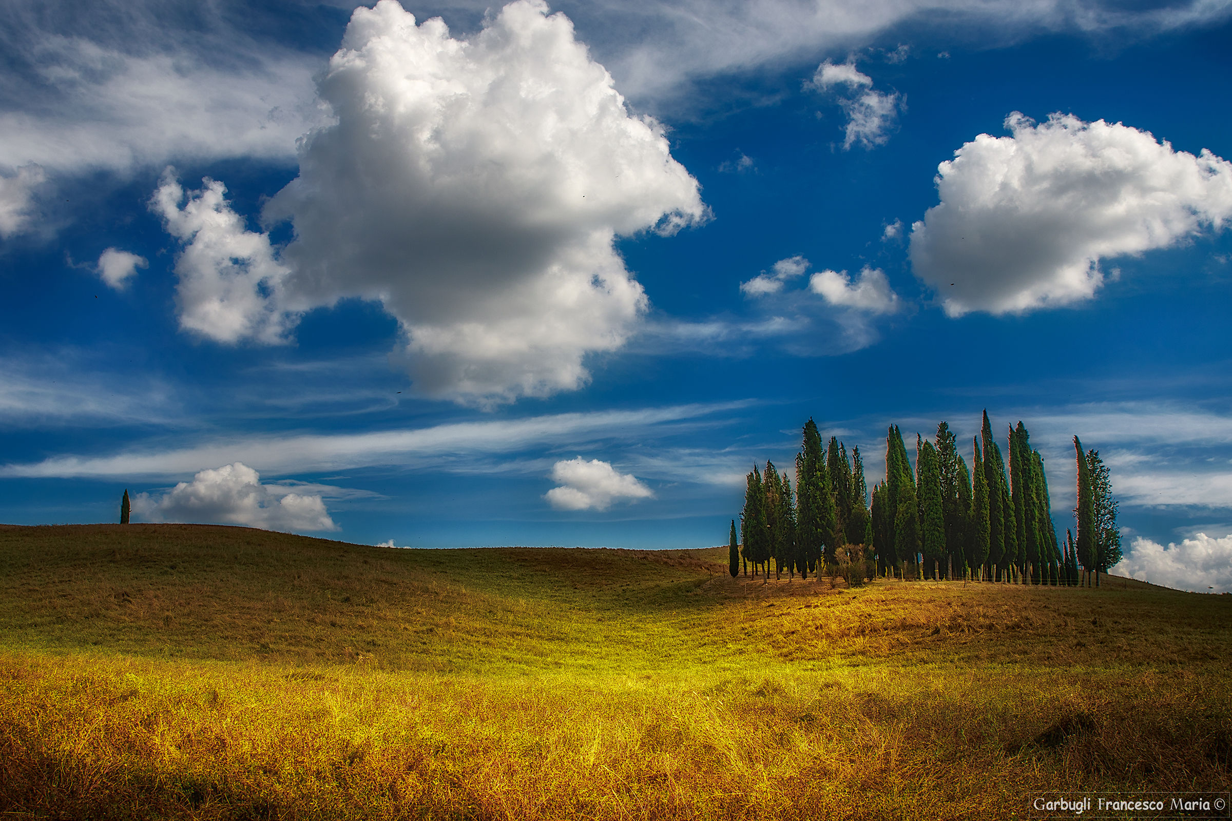 Clouds on cypress trees...
