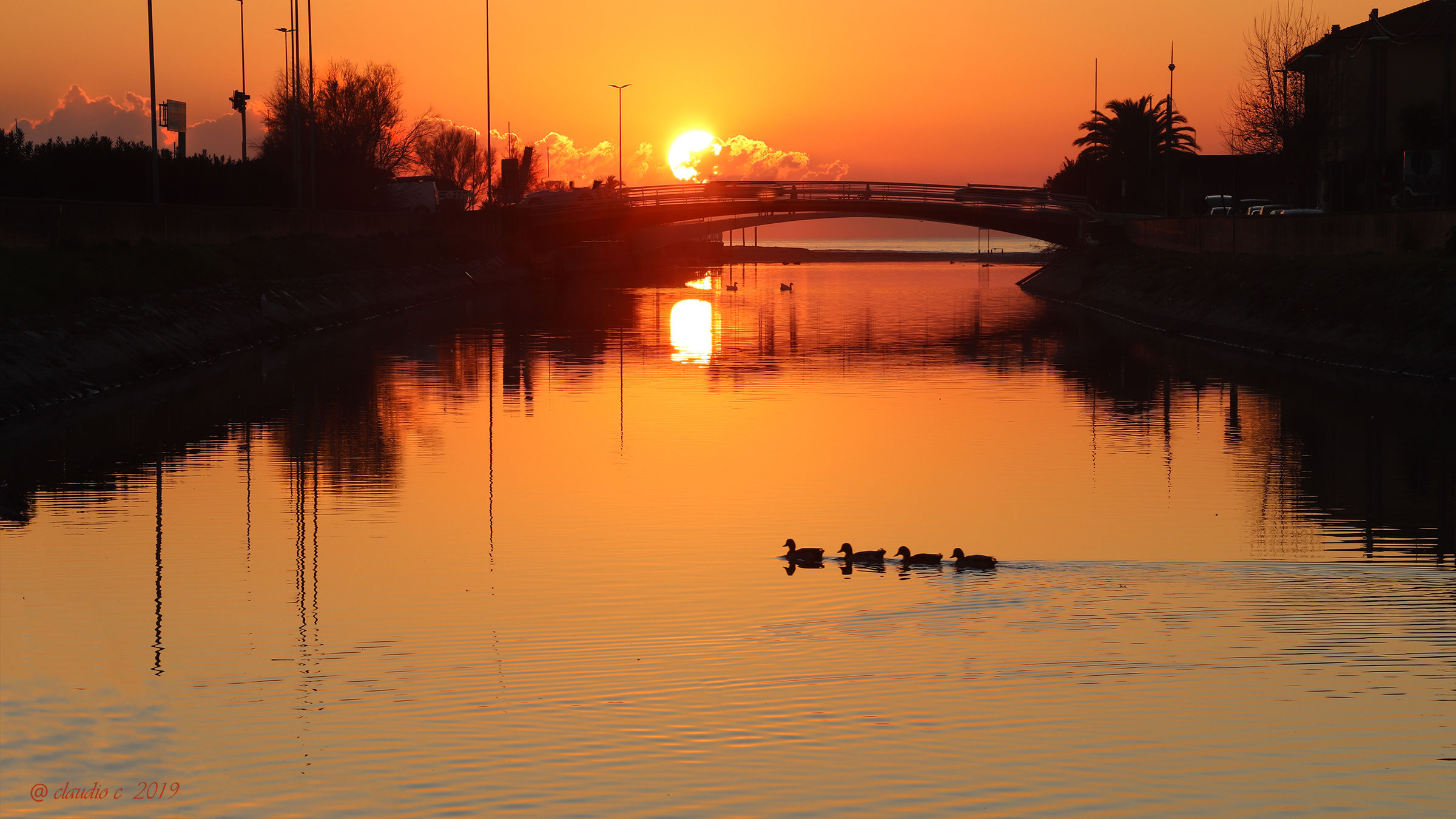 The Ducks and the sunset...