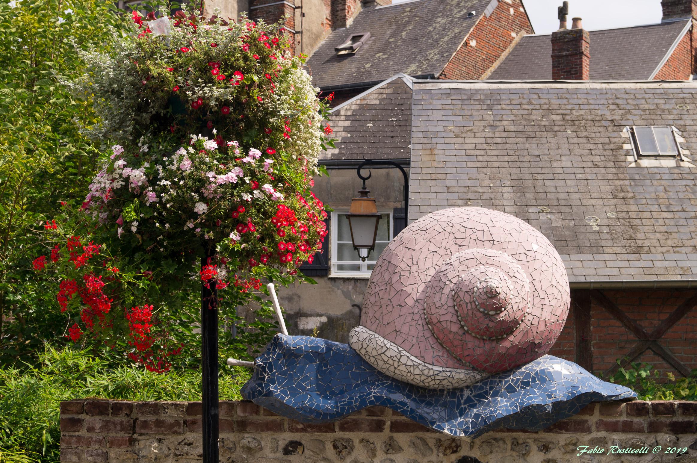 Honfleur, garden with snail...