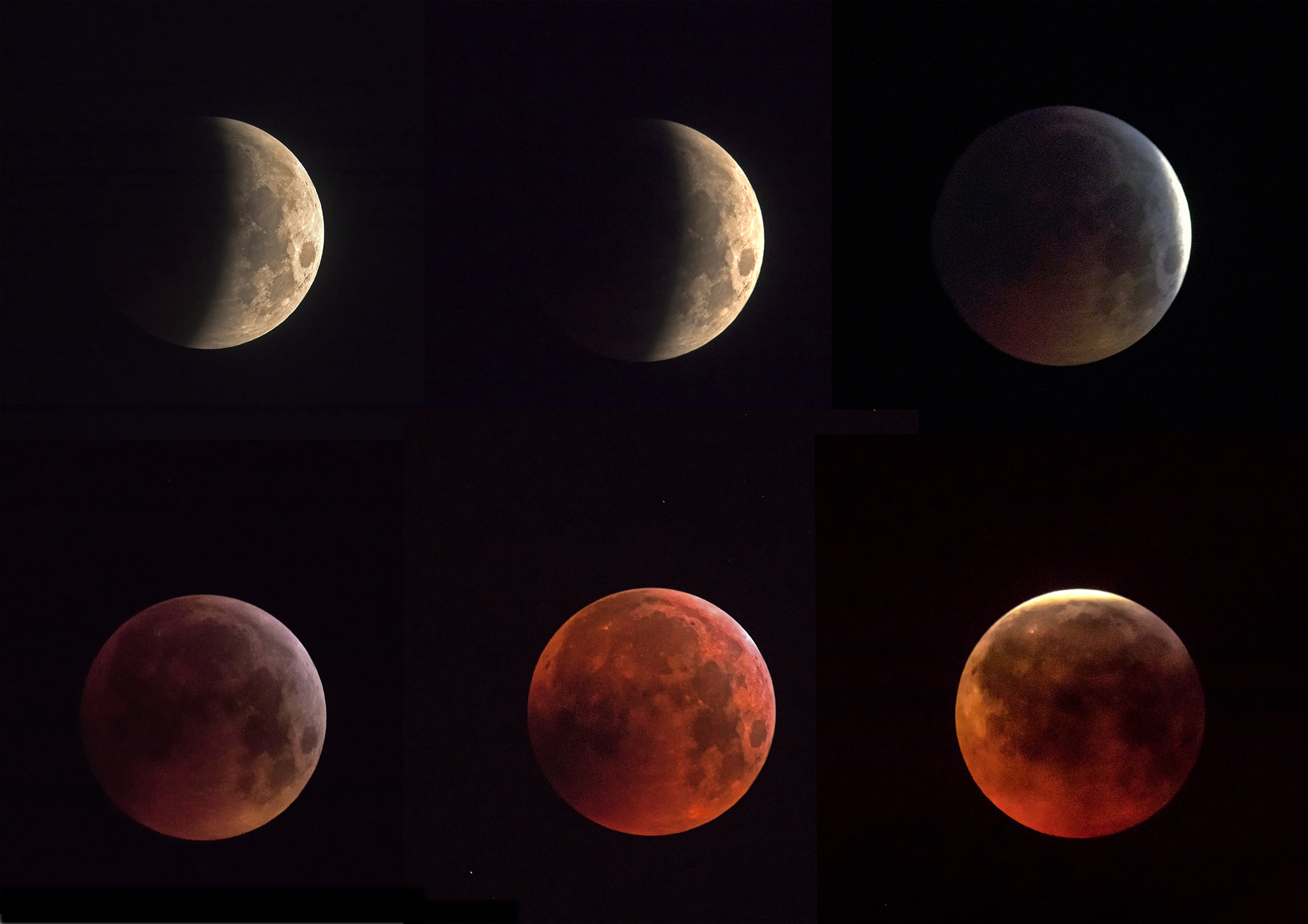 moon eclipse of the day...