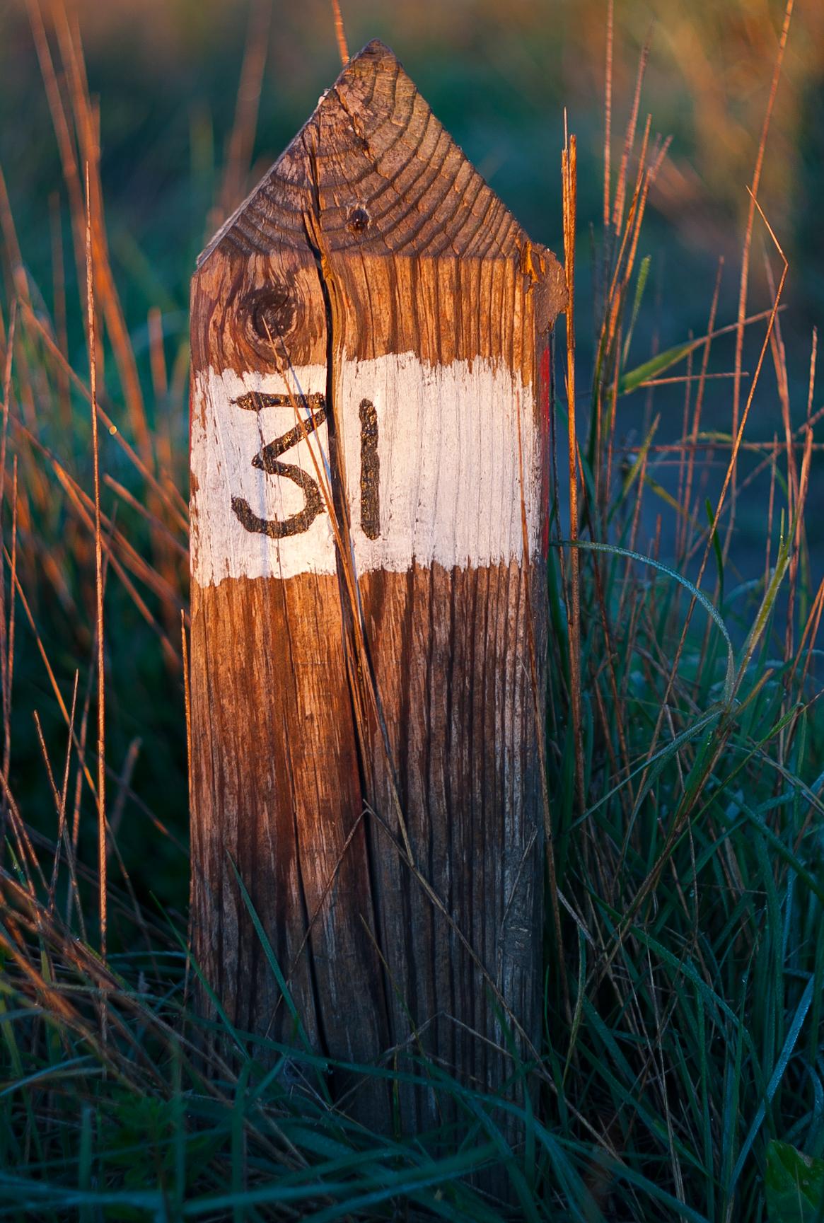 Sentiero 31...